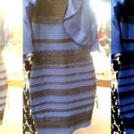A Nerdy Artist On Why No One Agrees On The Color Of This Dress