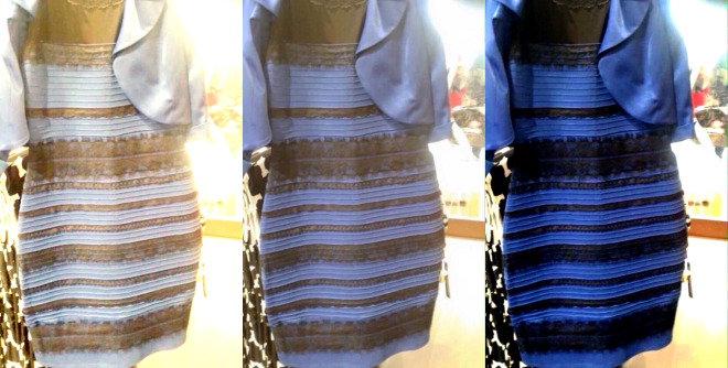Follow Wired     Twitter     Facebook     RSS  The Science of Why No One Agrees on the Color of This Dress | HelloArtsy.com
