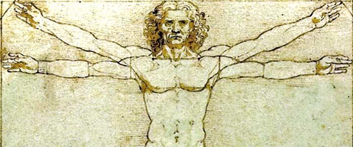 Drawing Lessons: DaVinci's Vitruvian Man