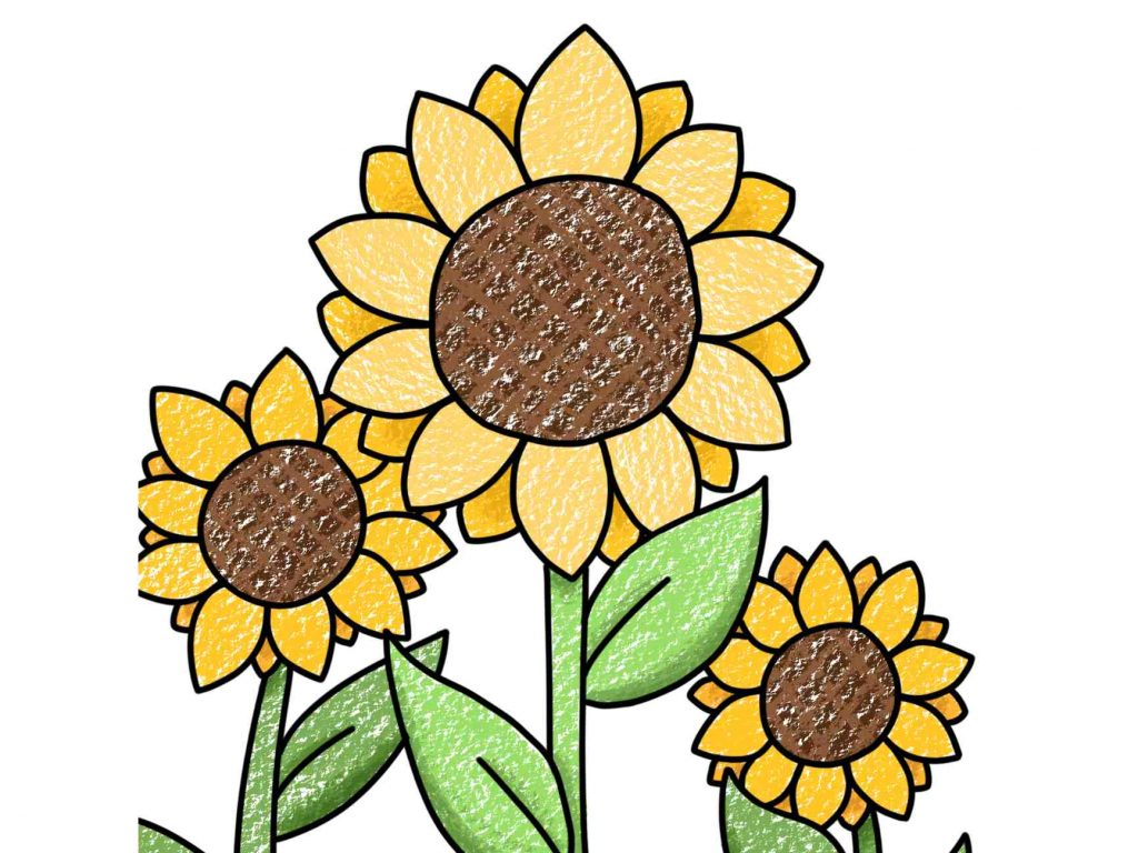 Easy to Draw Flowers for Kids
