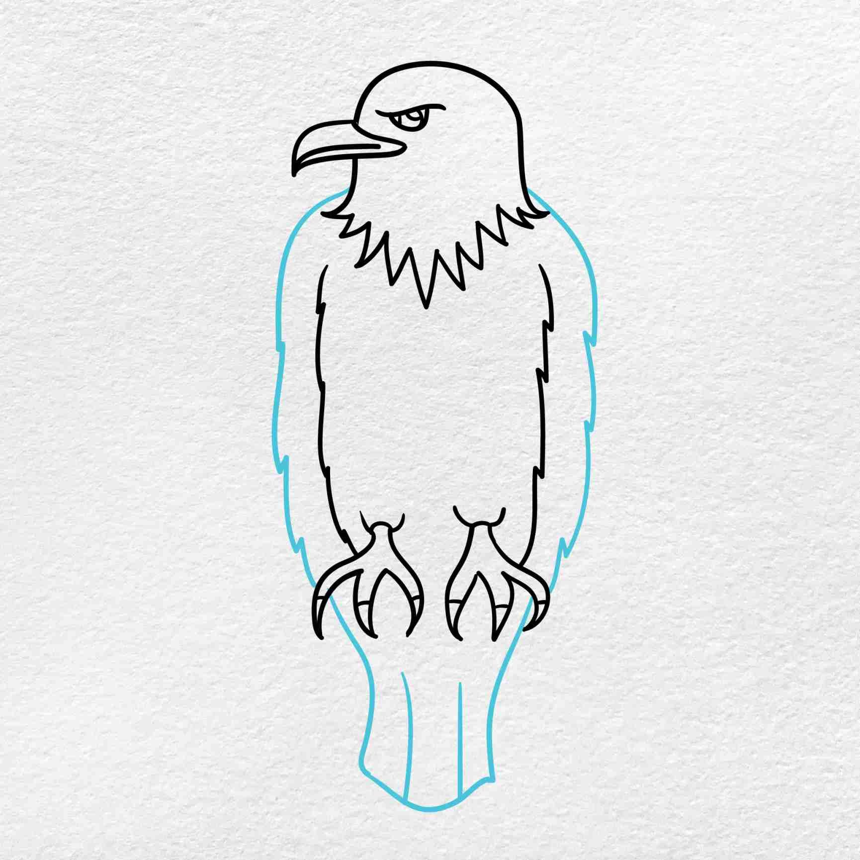Bald Eagle Drawing: Step 5