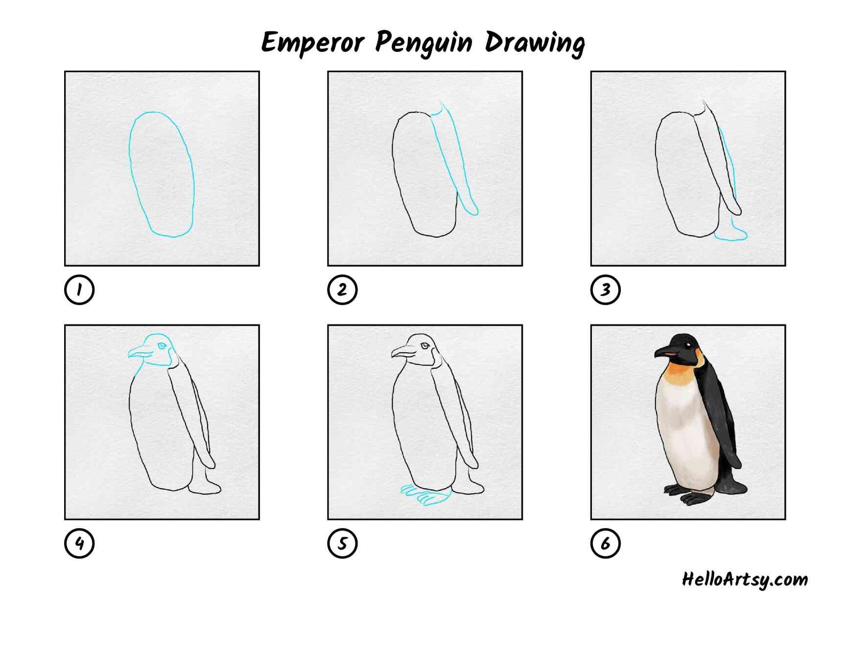 Emperor Penguin Drawing: All Steps