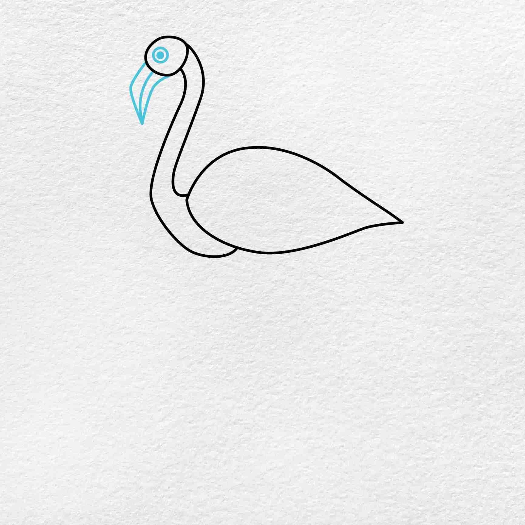 Flamingo Drawing: Step 3