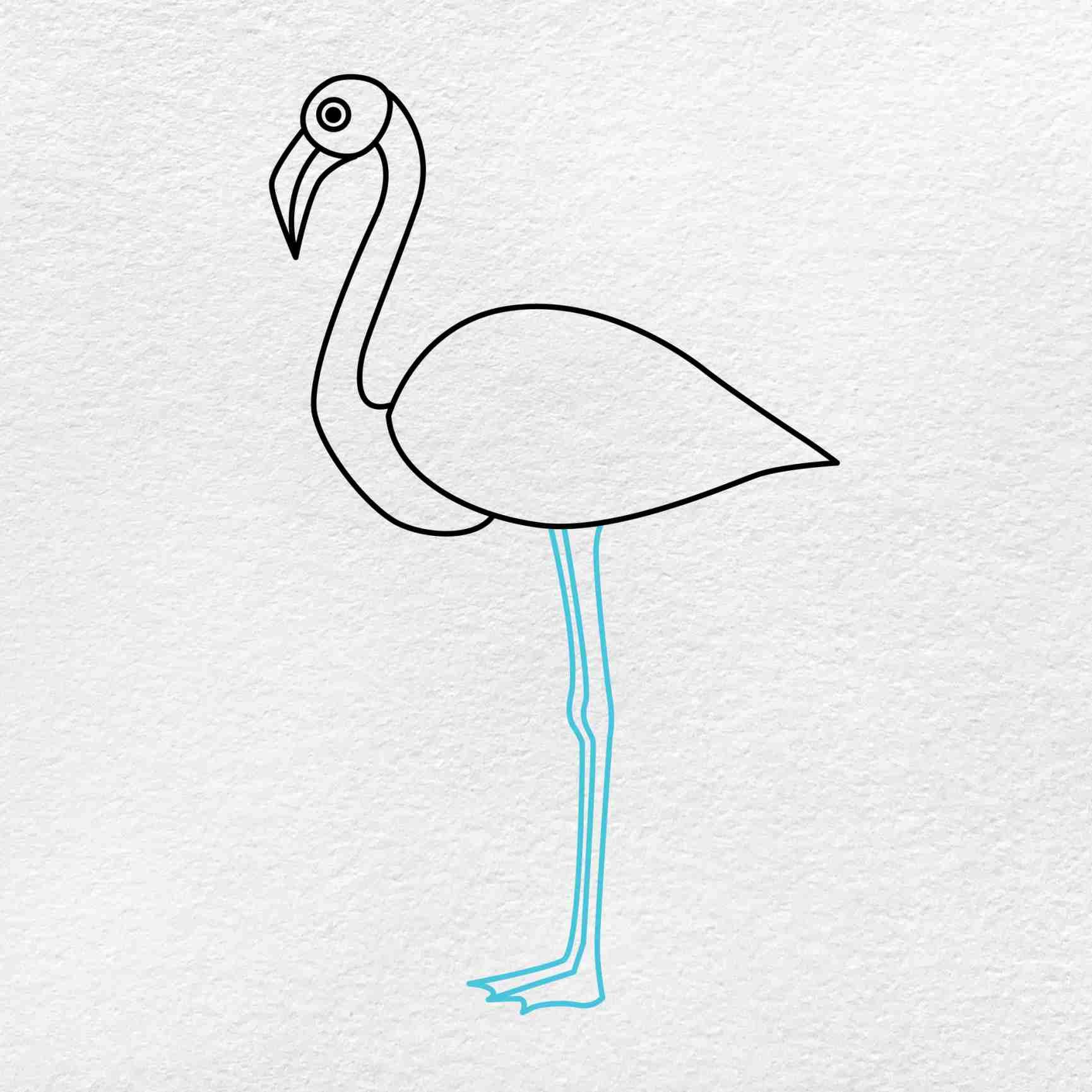 Flamingo Drawing: Step 4
