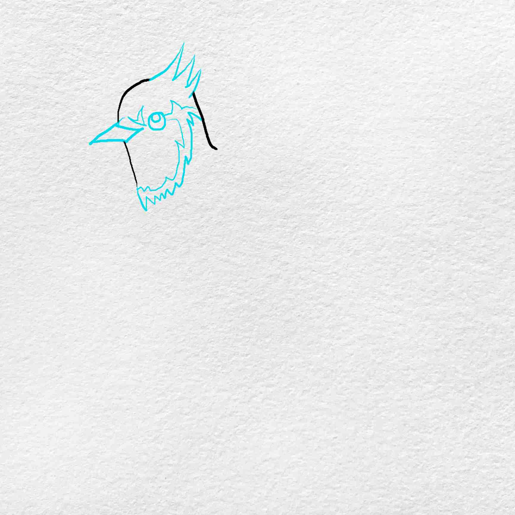 How To Draw A Blue Jay: Step 2