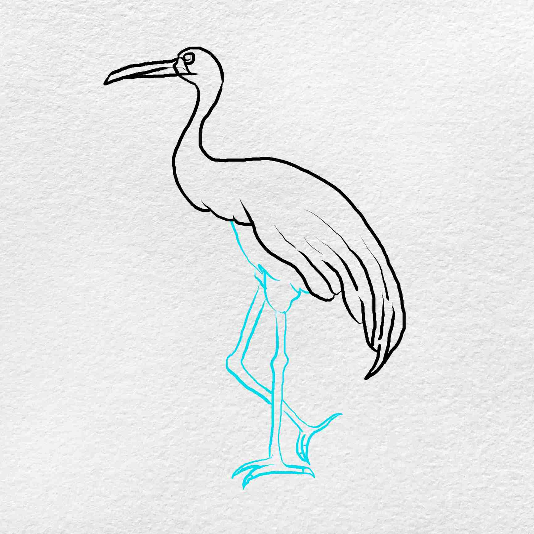 How To Draw A Crane: Step 5