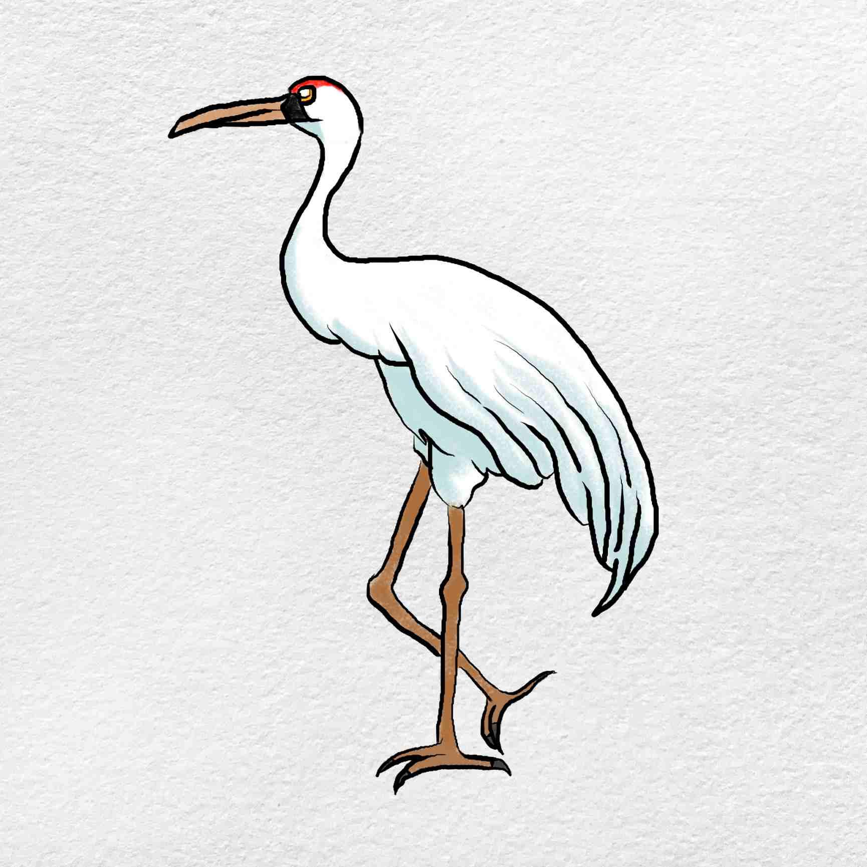 How To Draw A Crane: Step 6