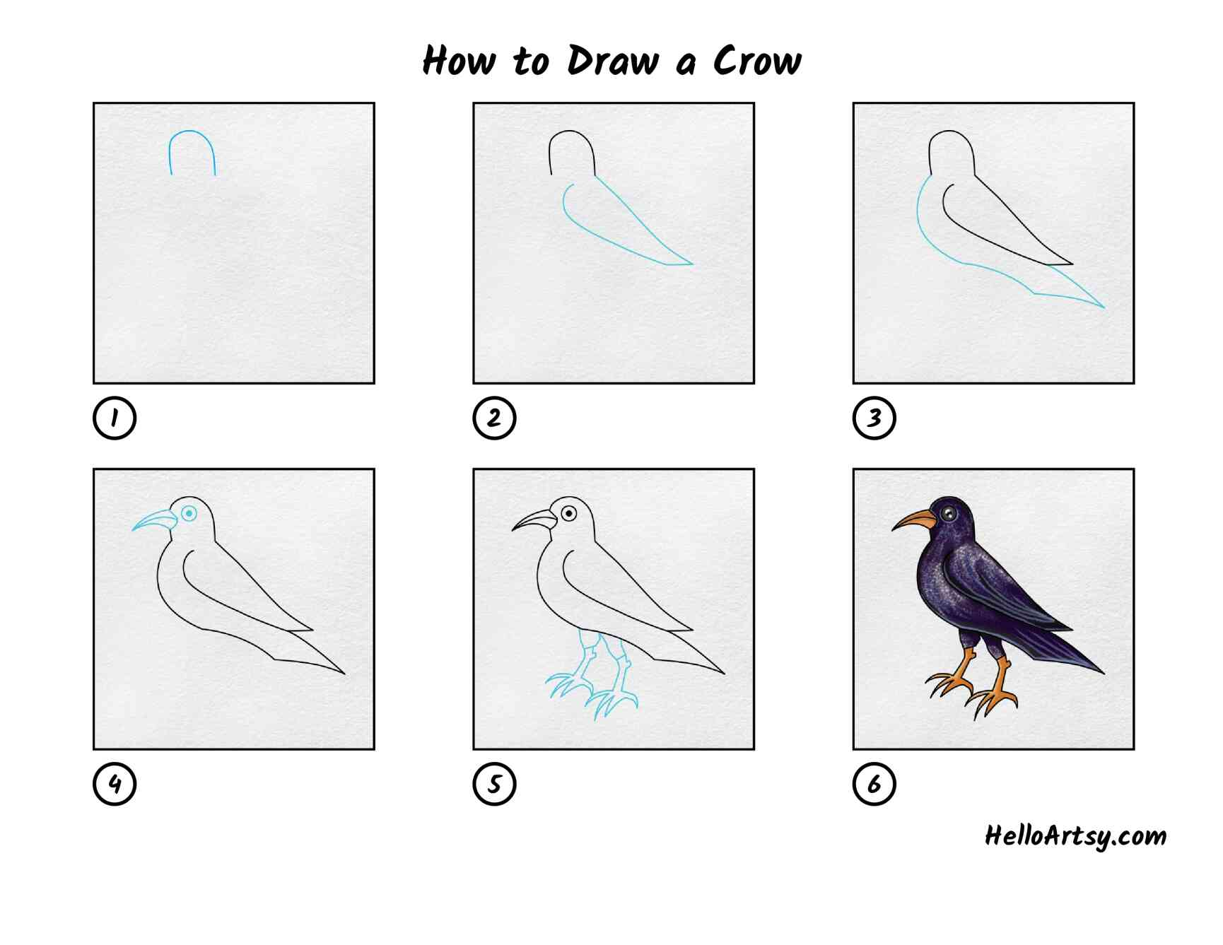 How To Draw A Crow: All Steps