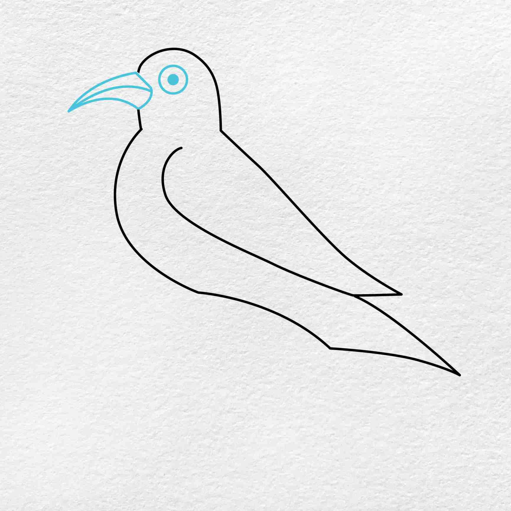 How To Draw A Crow: Step 4