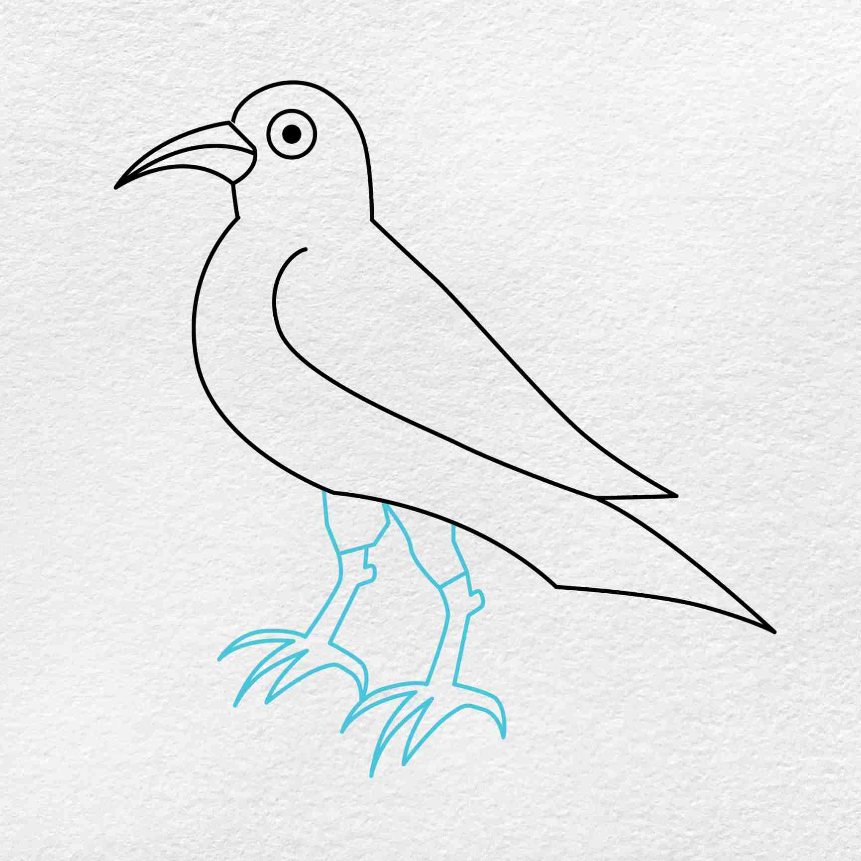 How To Draw A Crow: Step 5