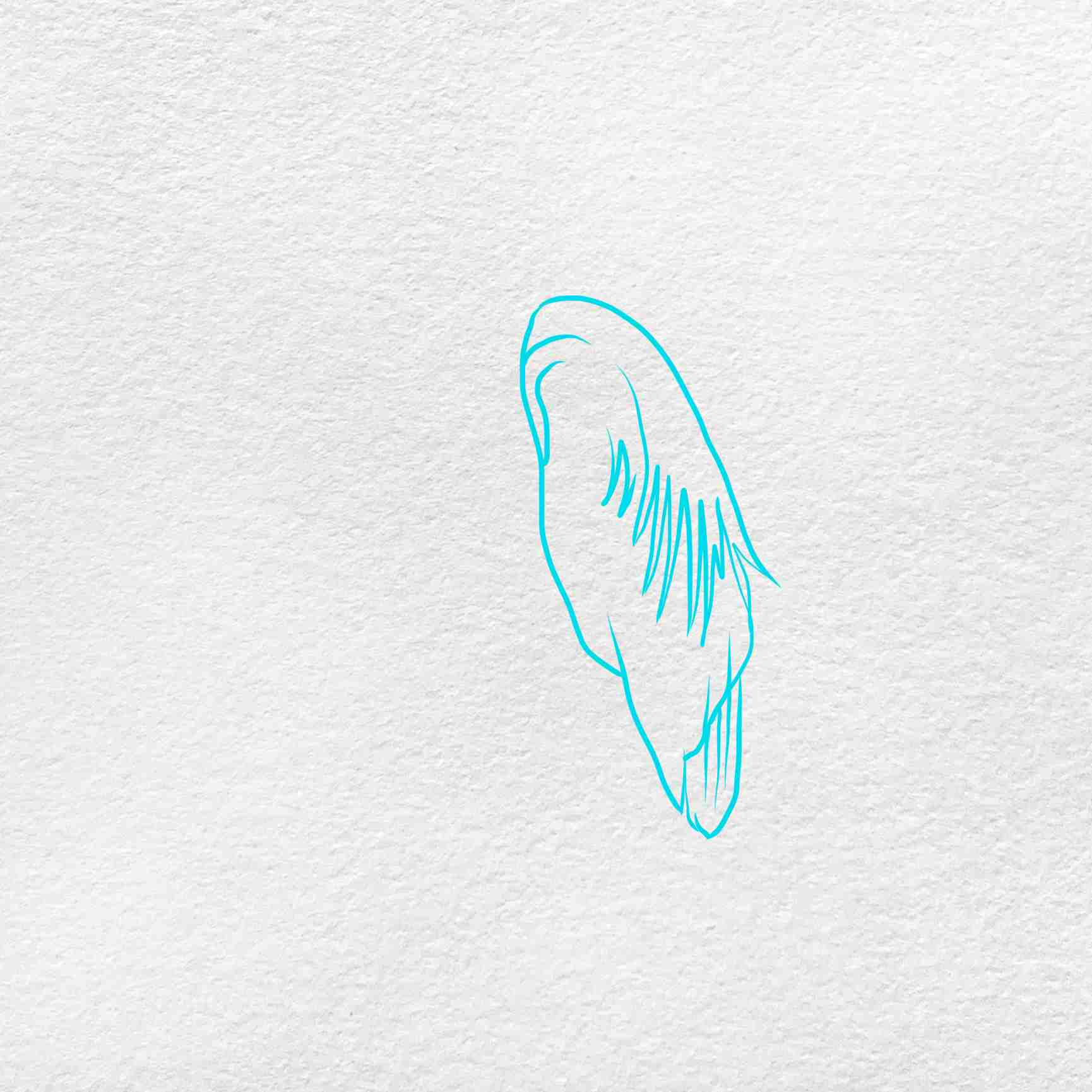 How To Draw A Heron: Step 1