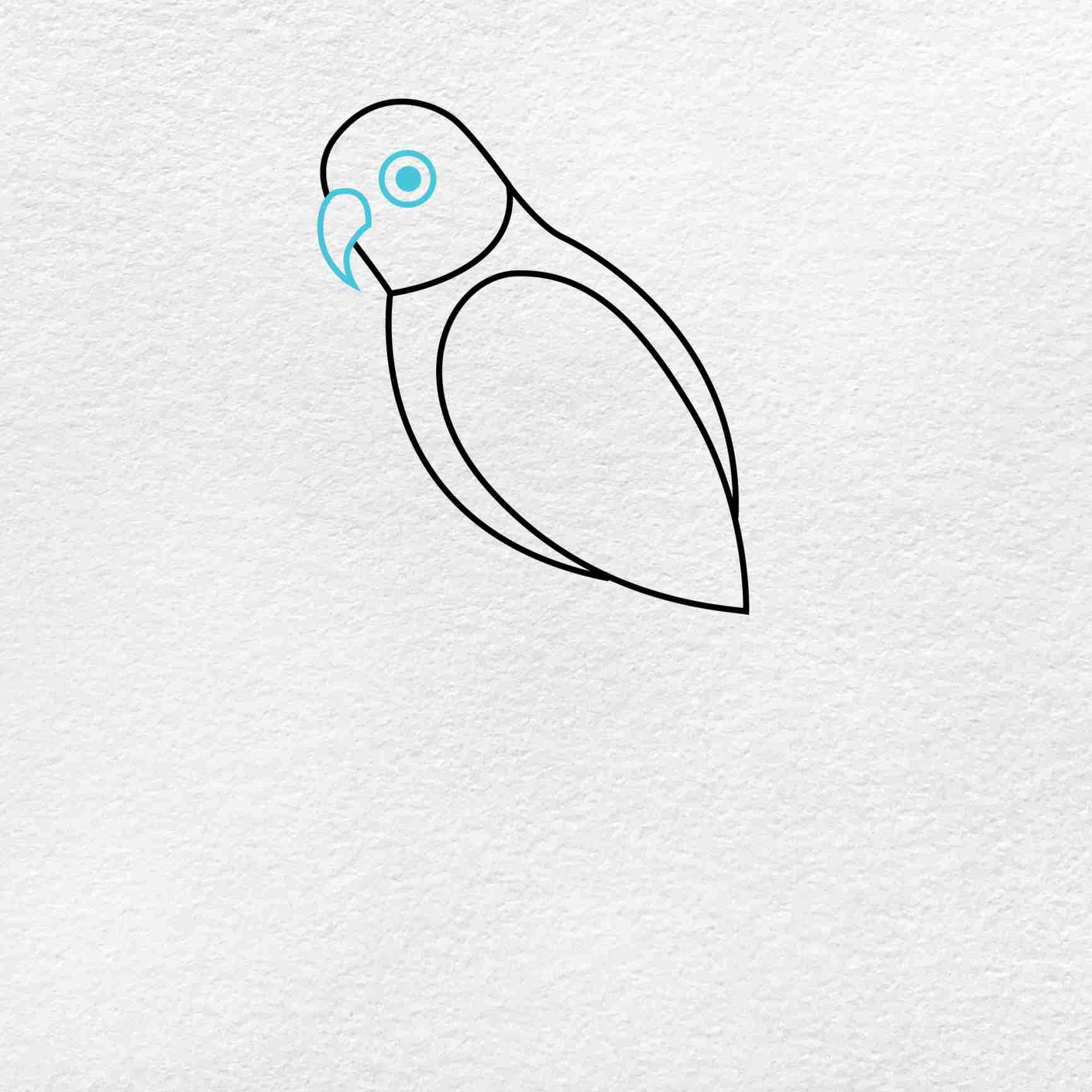 How To Draw A Parrot: Step 3