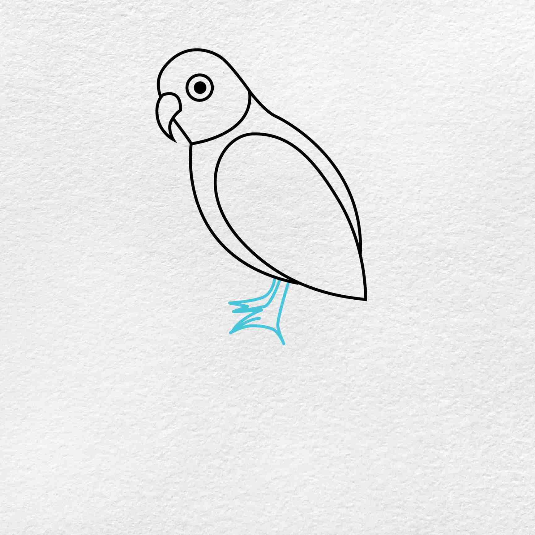 How To Draw A Parrot: Step 4