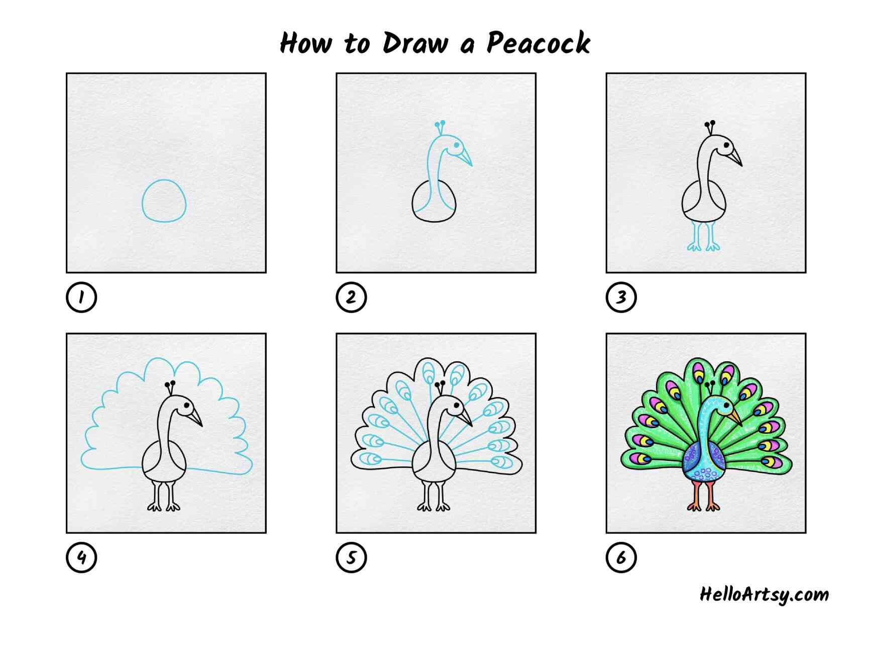How To Draw A Peacock: All Steps