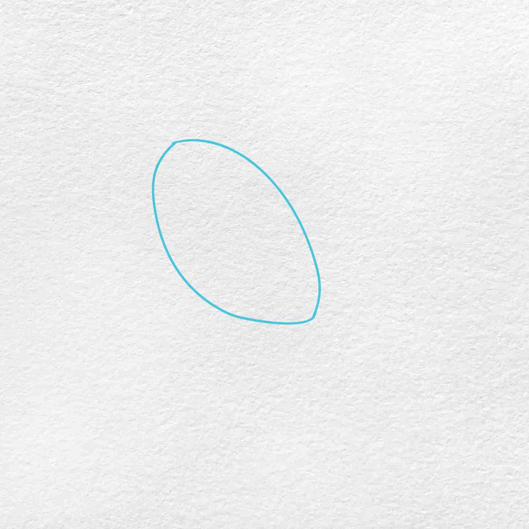 How To Draw A Robin: Step 1
