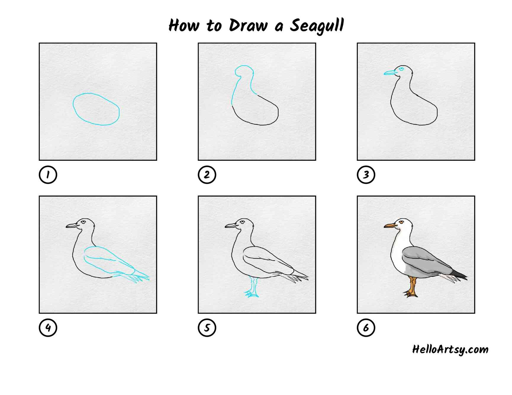 How To Draw A Seagull: All Steps