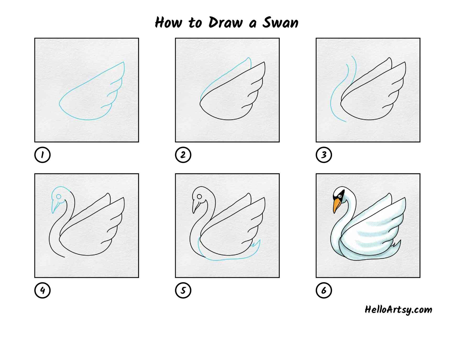 How To Draw A Swan: All Steps