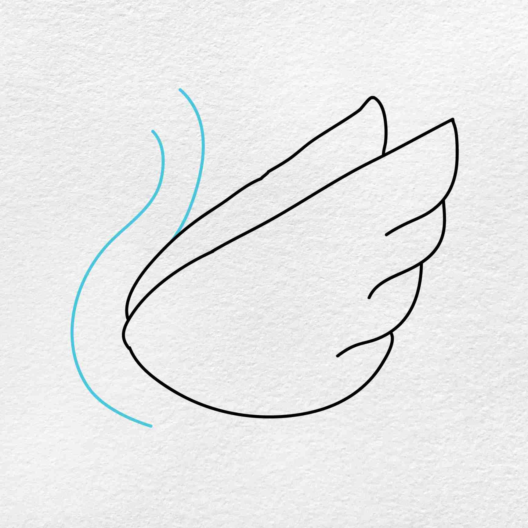 How To Draw A Swan: Step 3