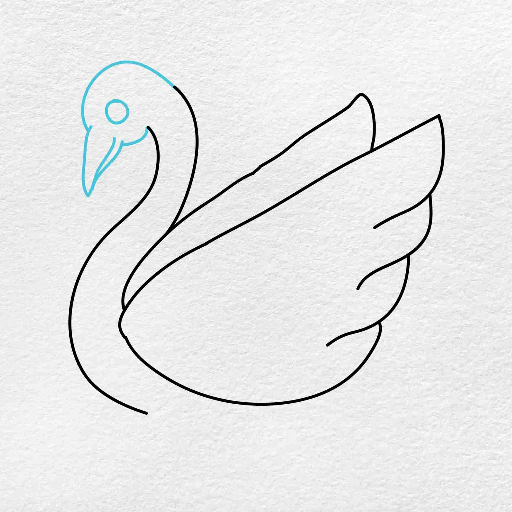 How To Draw A Swan: Step 4