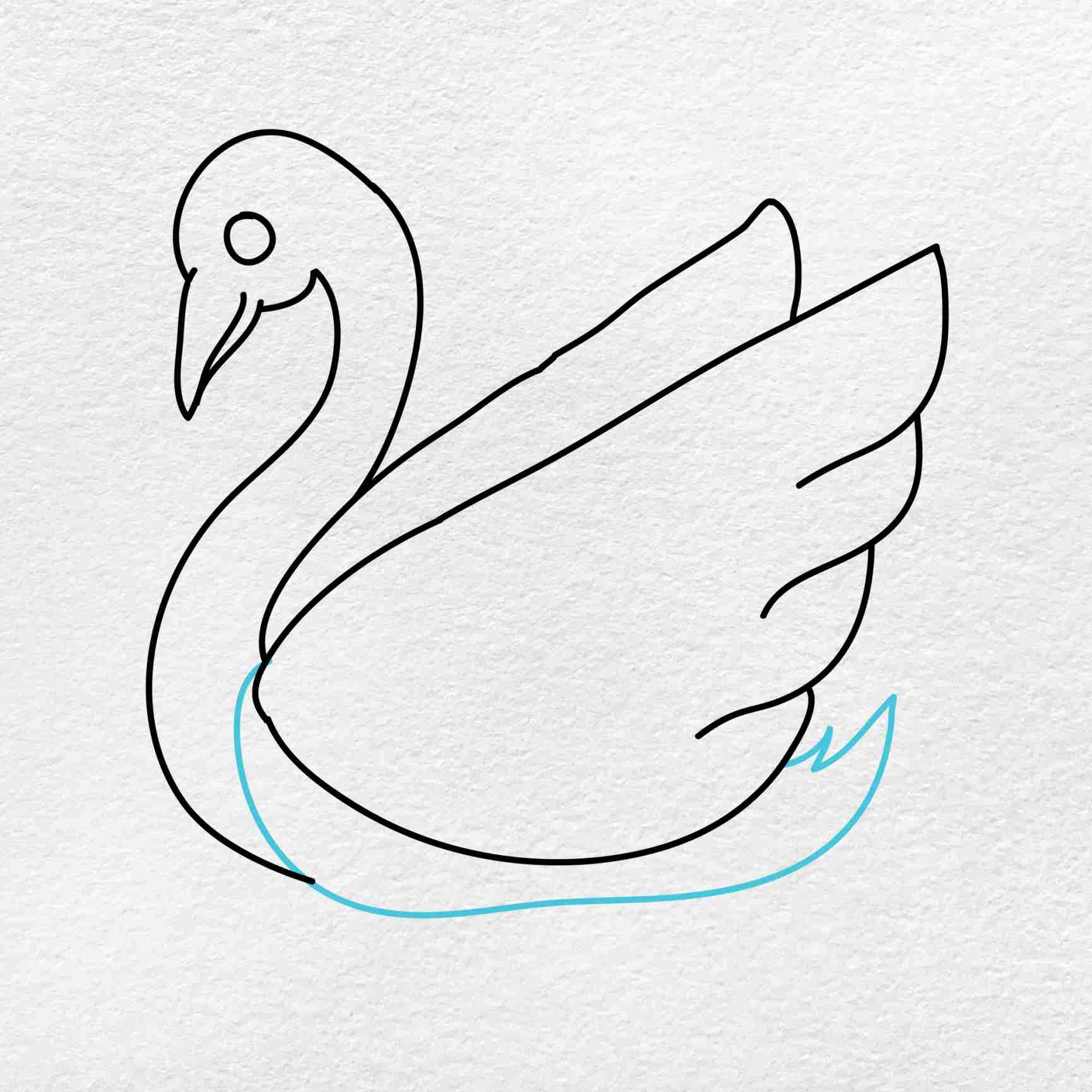 How To Draw A Swan: Step 5