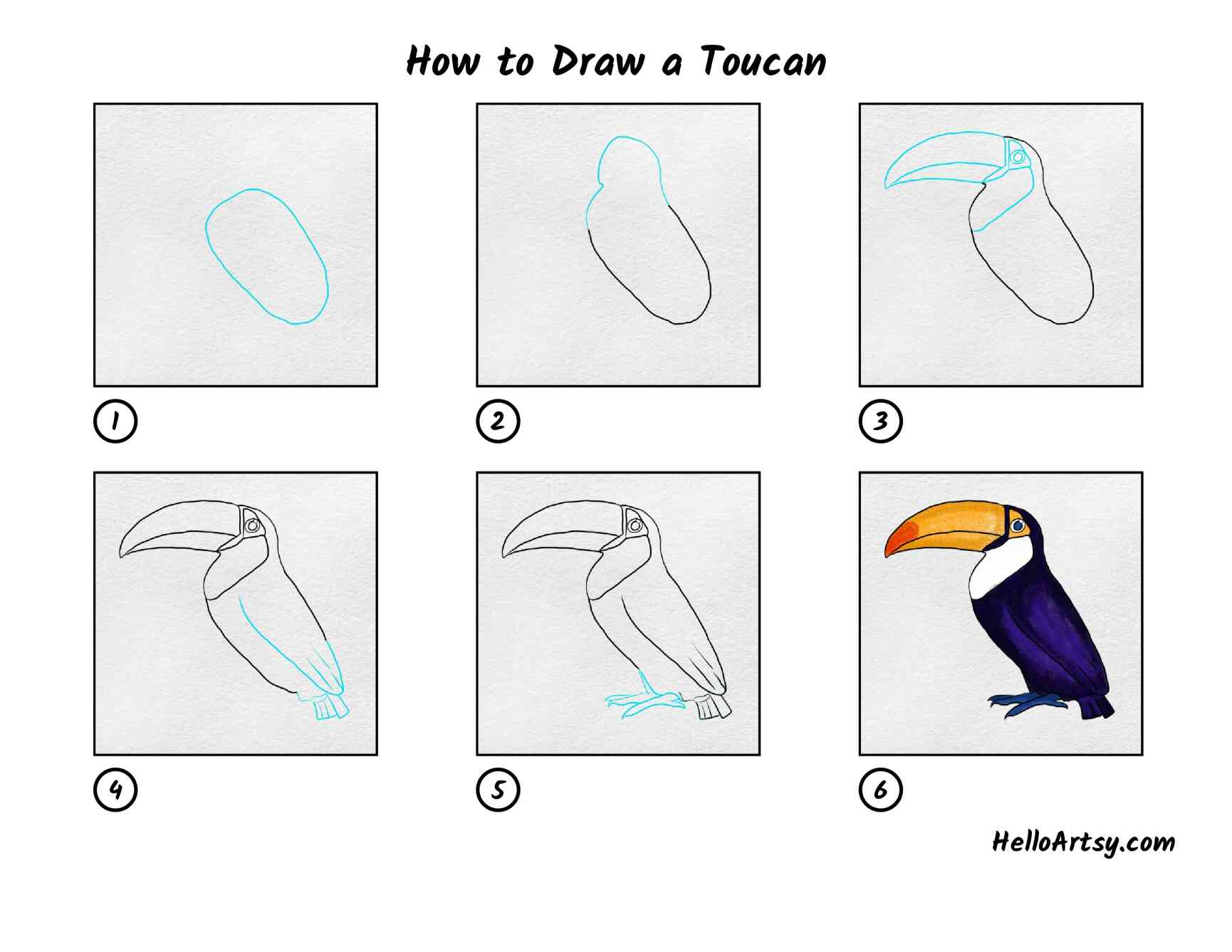 How To Draw A Toucan: All Steps