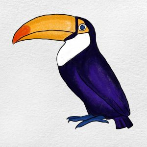 How To Draw A Toucan: Step 6