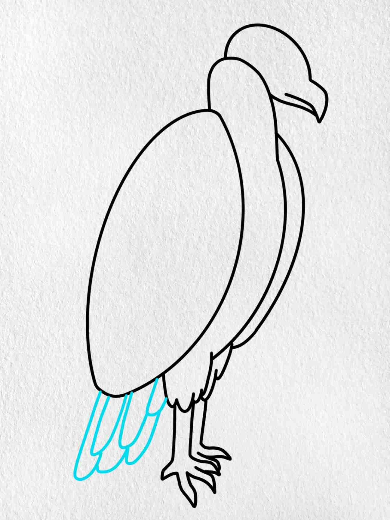 How To Draw A Vulture: Step 6