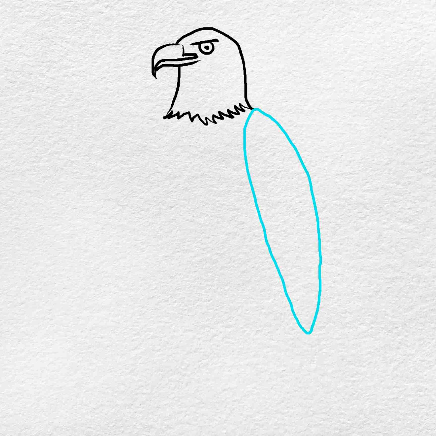 How To Draw An Eagle Easy: Step 3