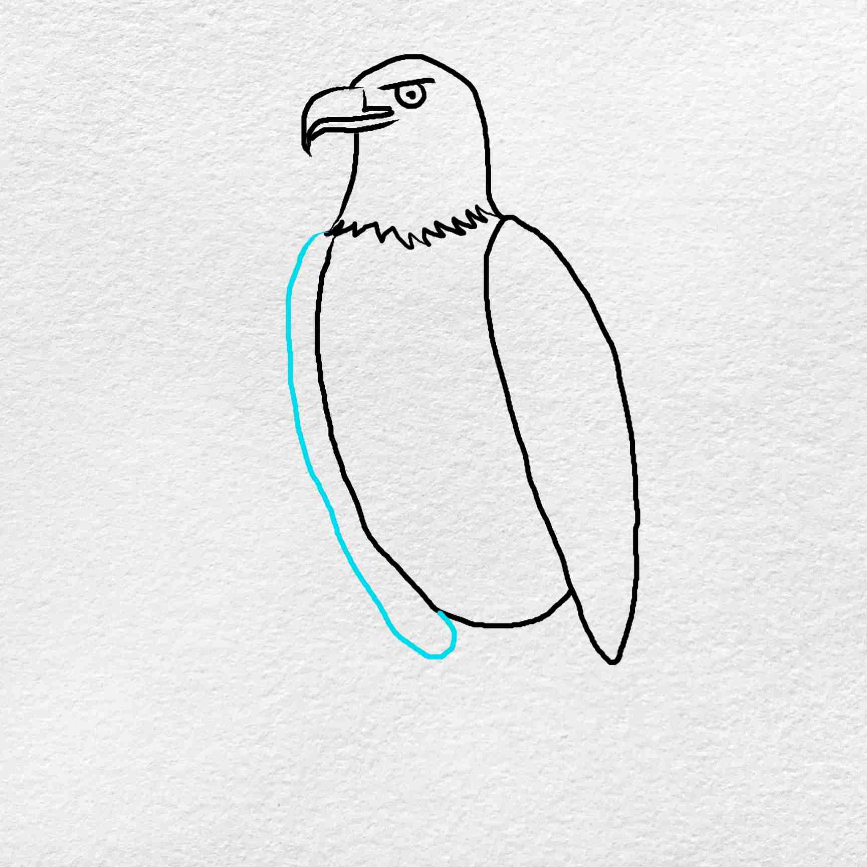 How To Draw An Eagle Easy: Step 5