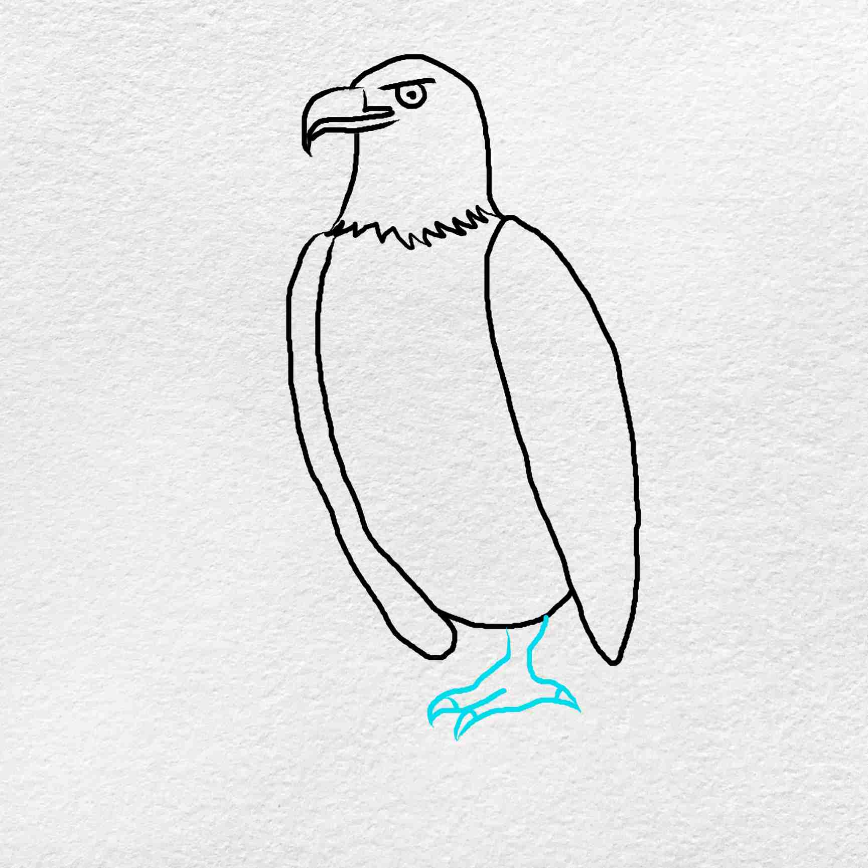 How To Draw An Eagle Easy: Step 6