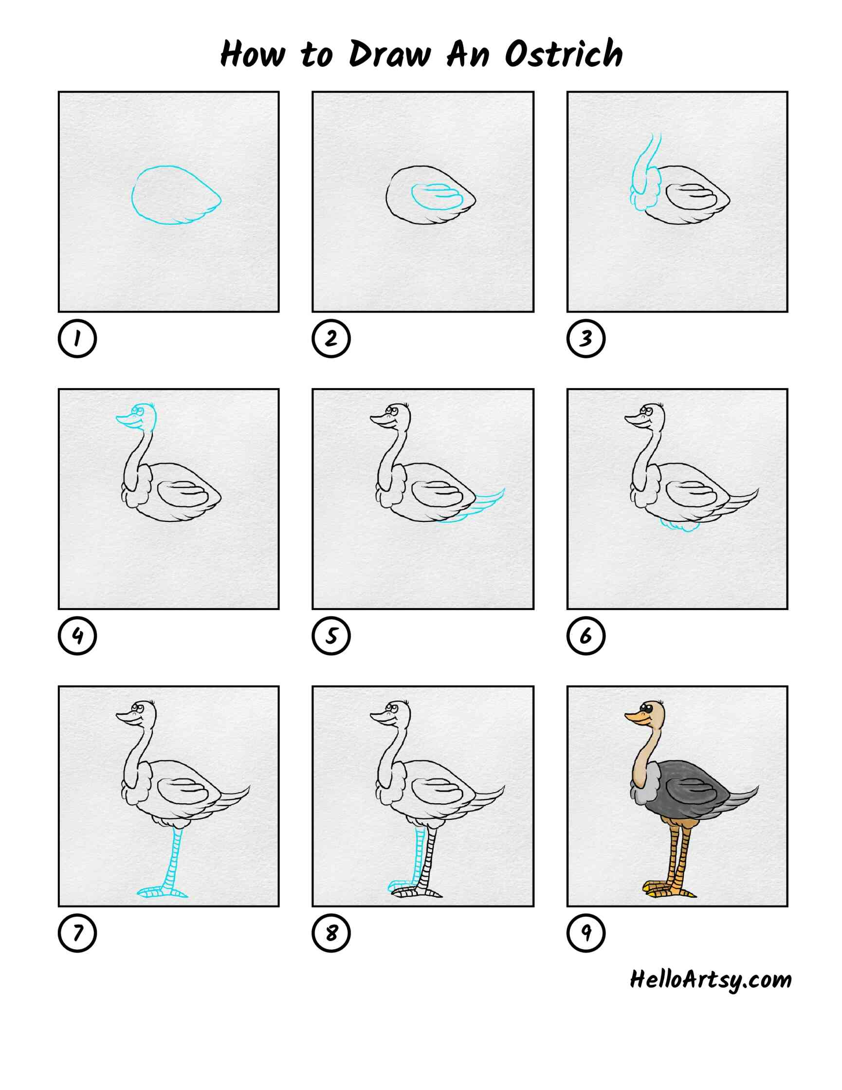 How To Draw An Ostrich: All Steps