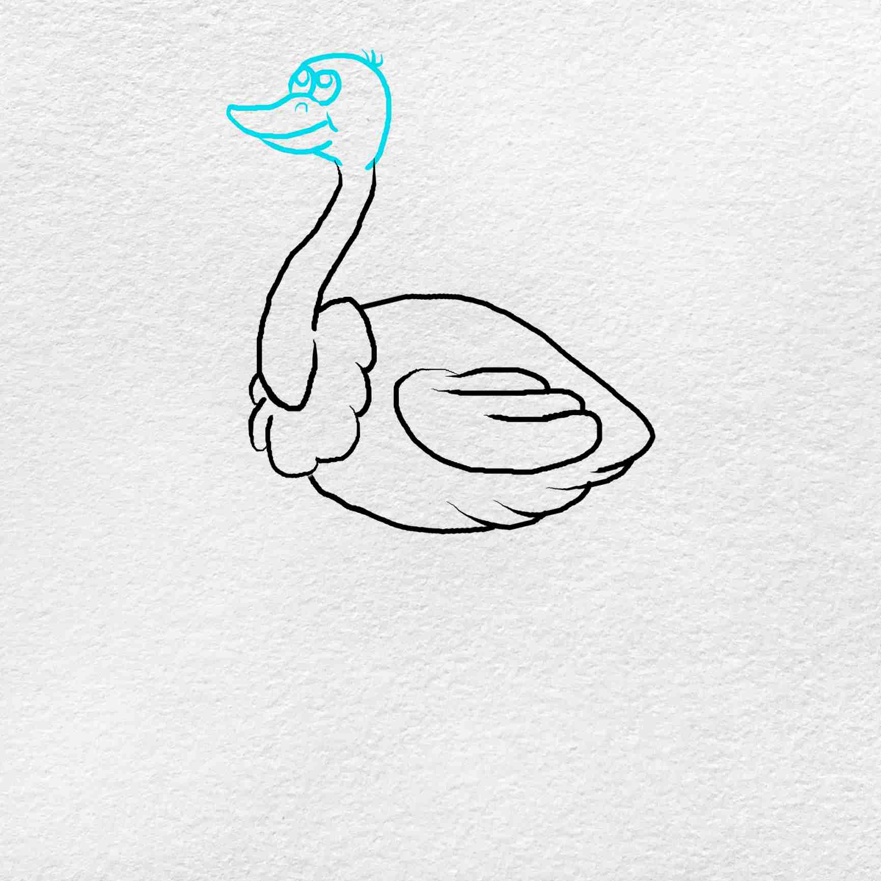 How To Draw An Ostrich: Step 4