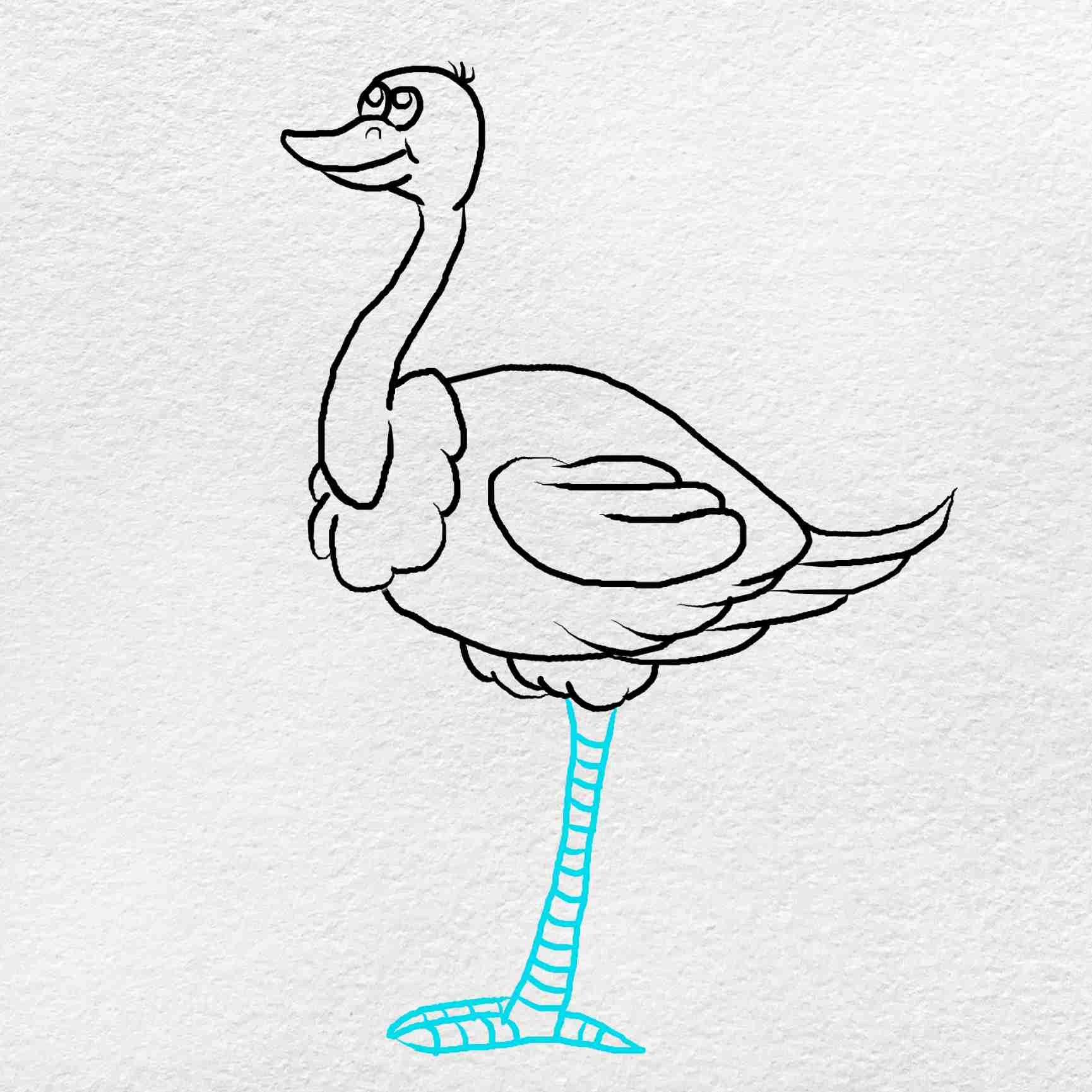 How To Draw An Ostrich: Step 7