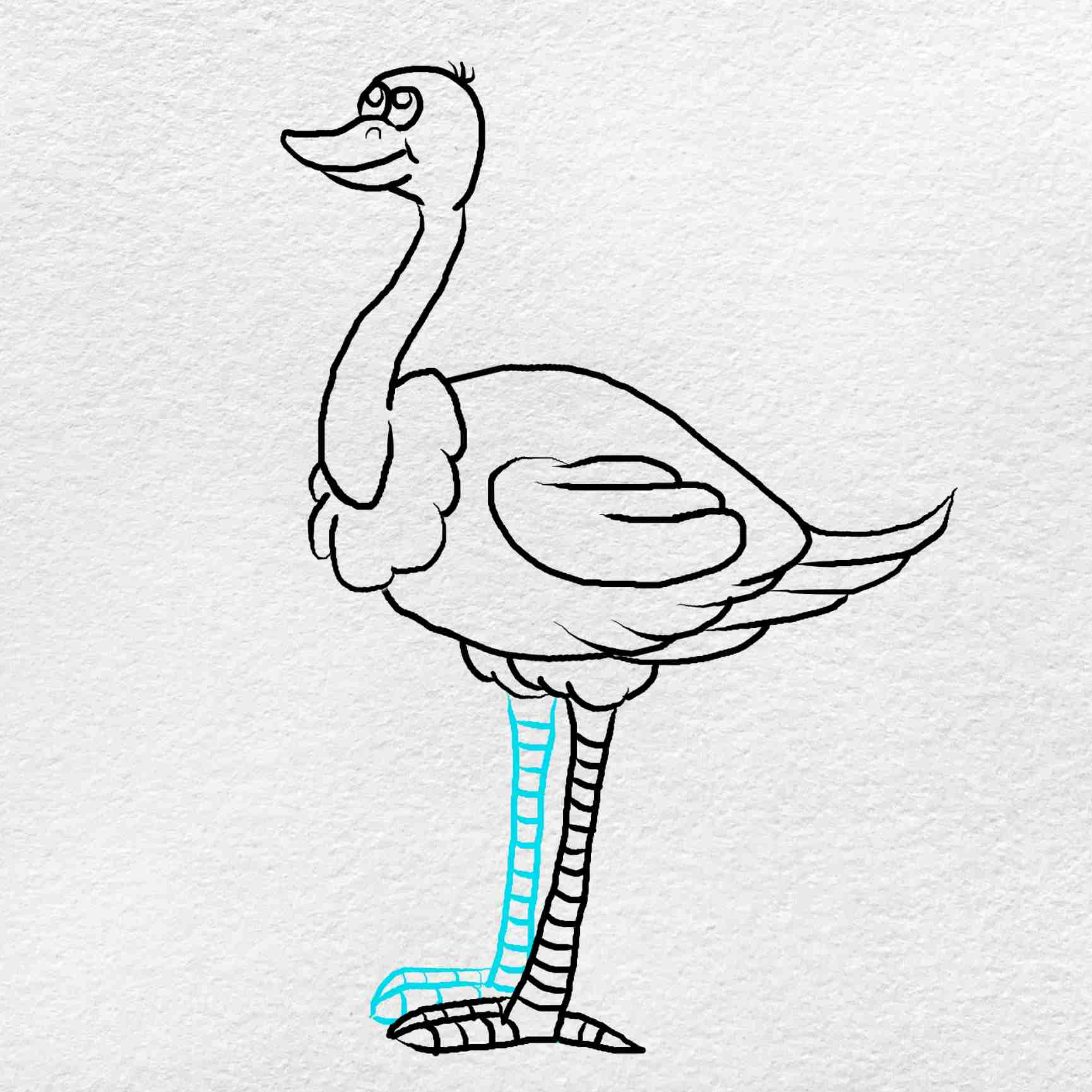 How To Draw An Ostrich: Step 8