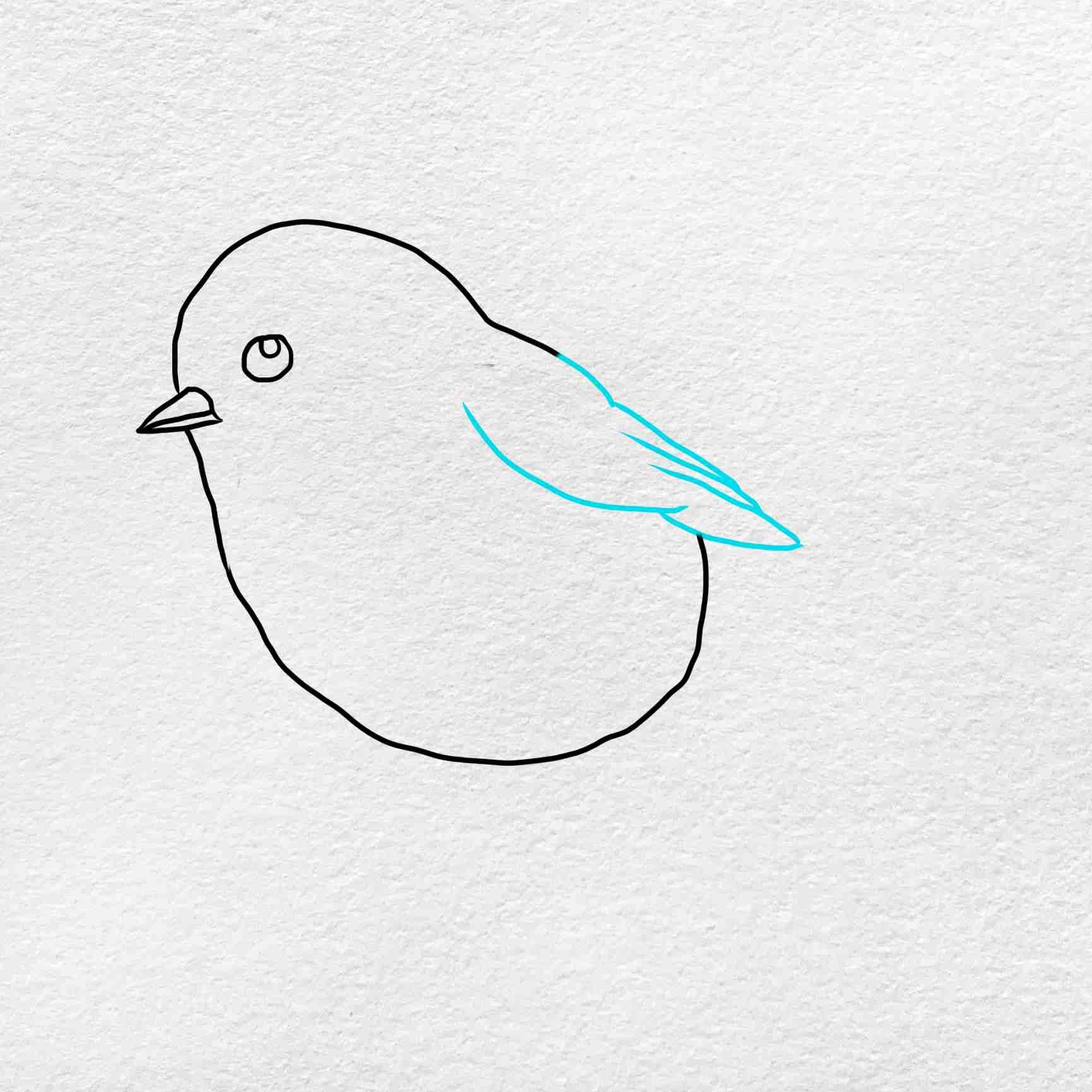 How To Draw Chickadee: Step 3