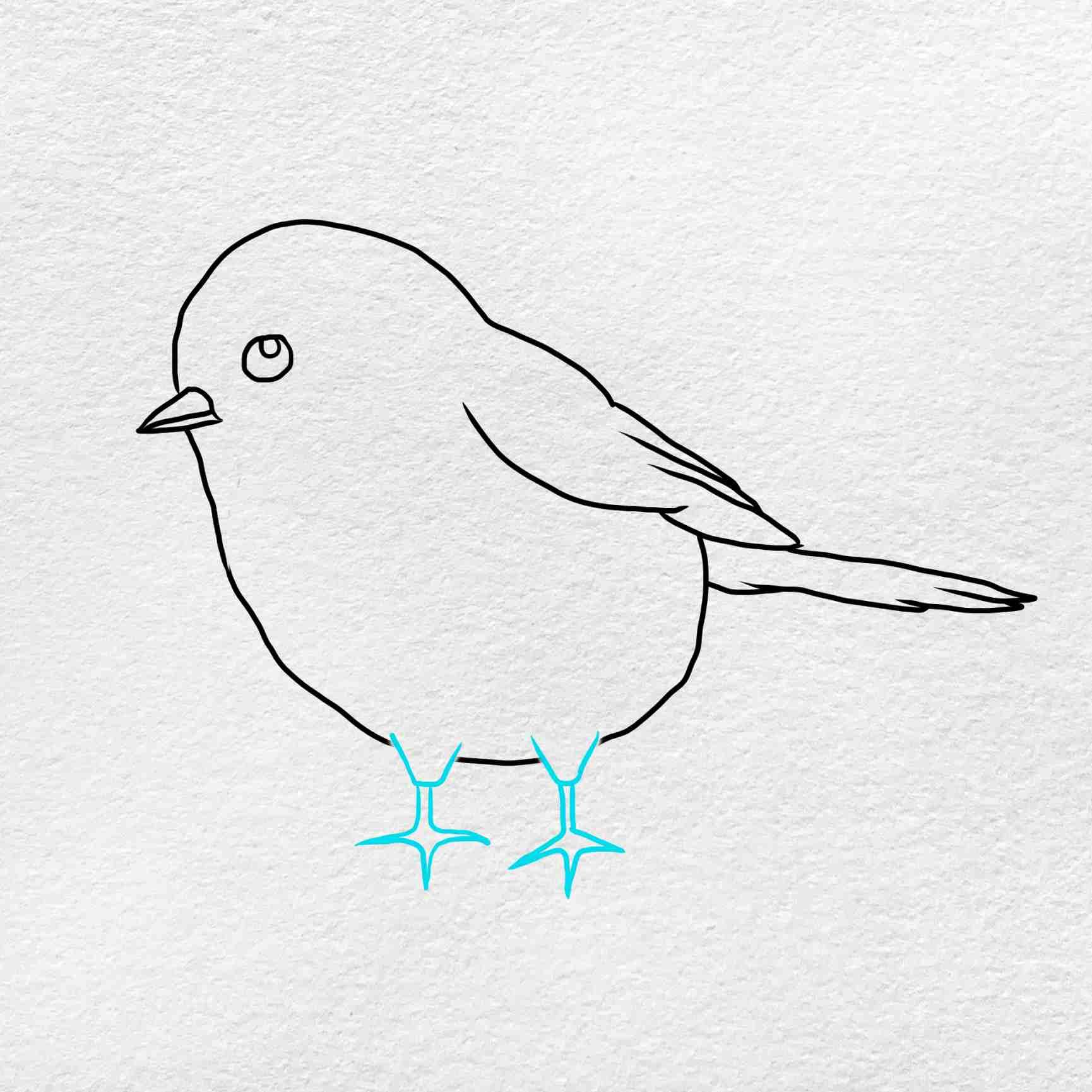 How To Draw Chickadee: Step 5