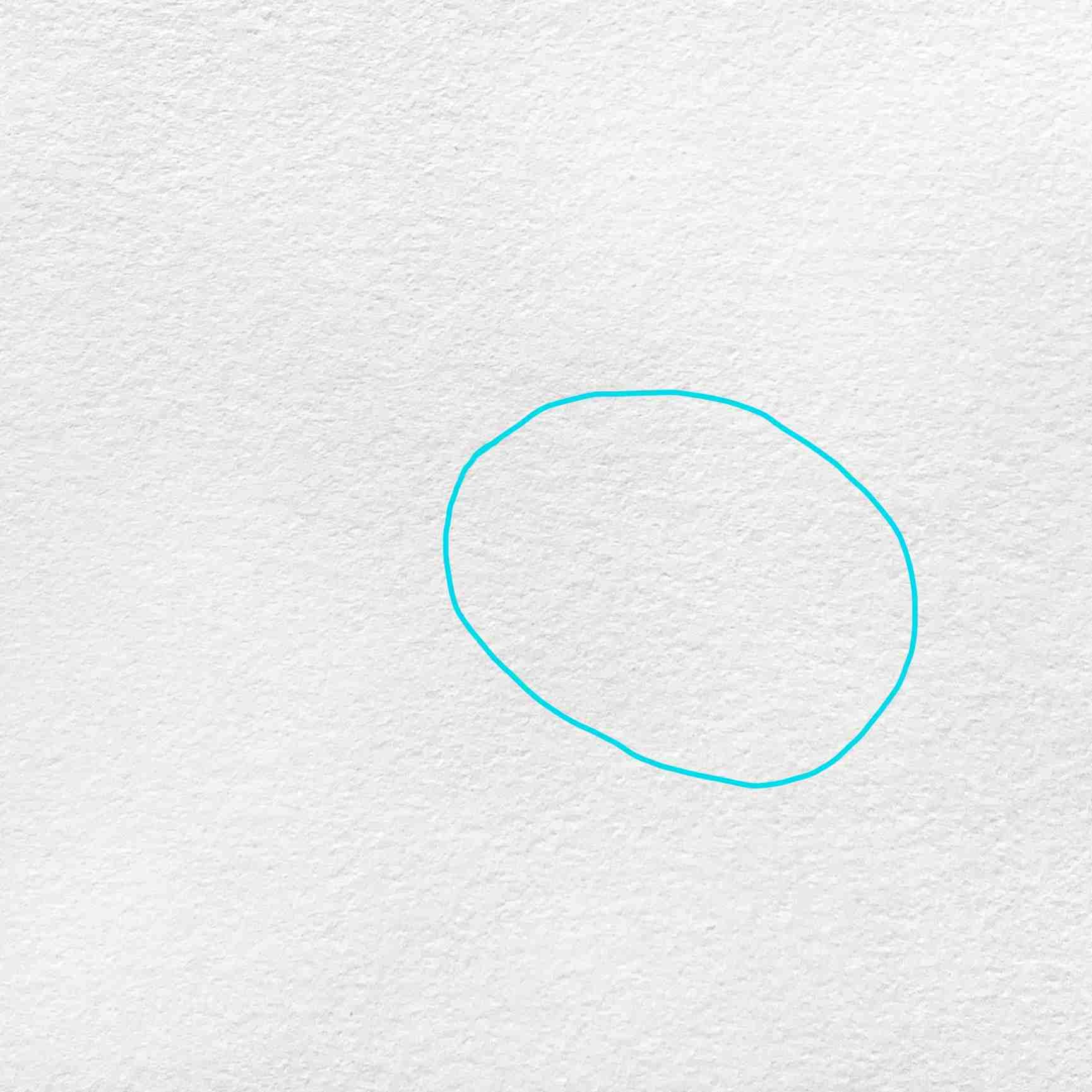 How To Draw Kiwi Bird: Step 1