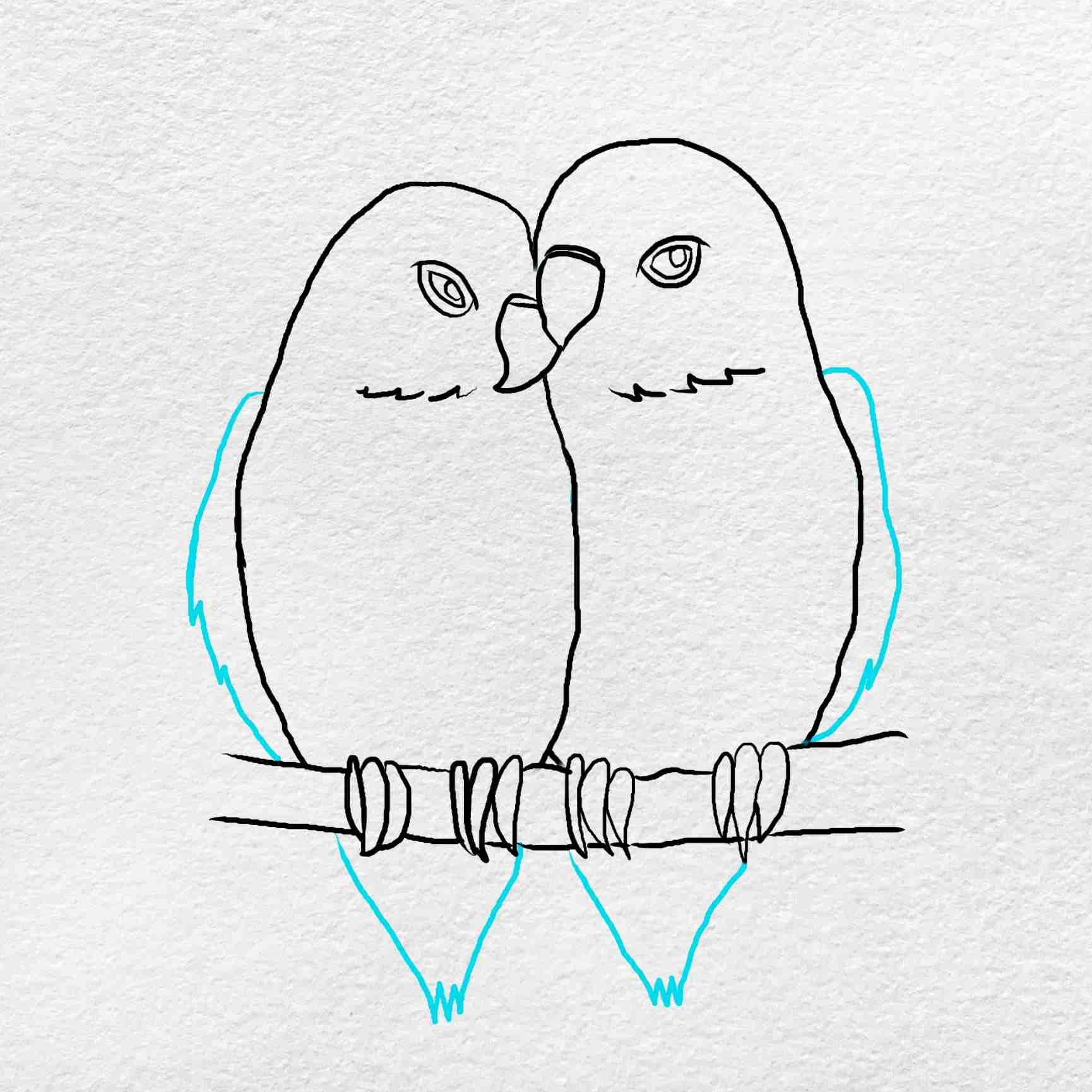 How To Draw Love Birds: Step 5
