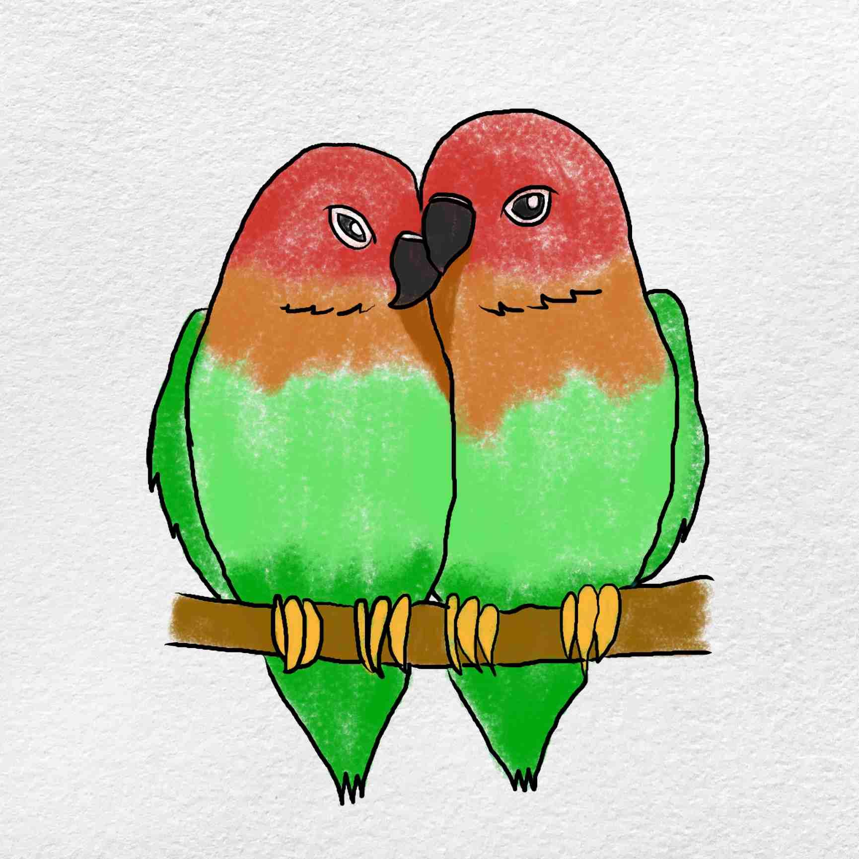 How To Draw Love Birds: Step 6
