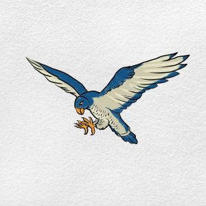How To Draw Peregrine Falcon: Step 9