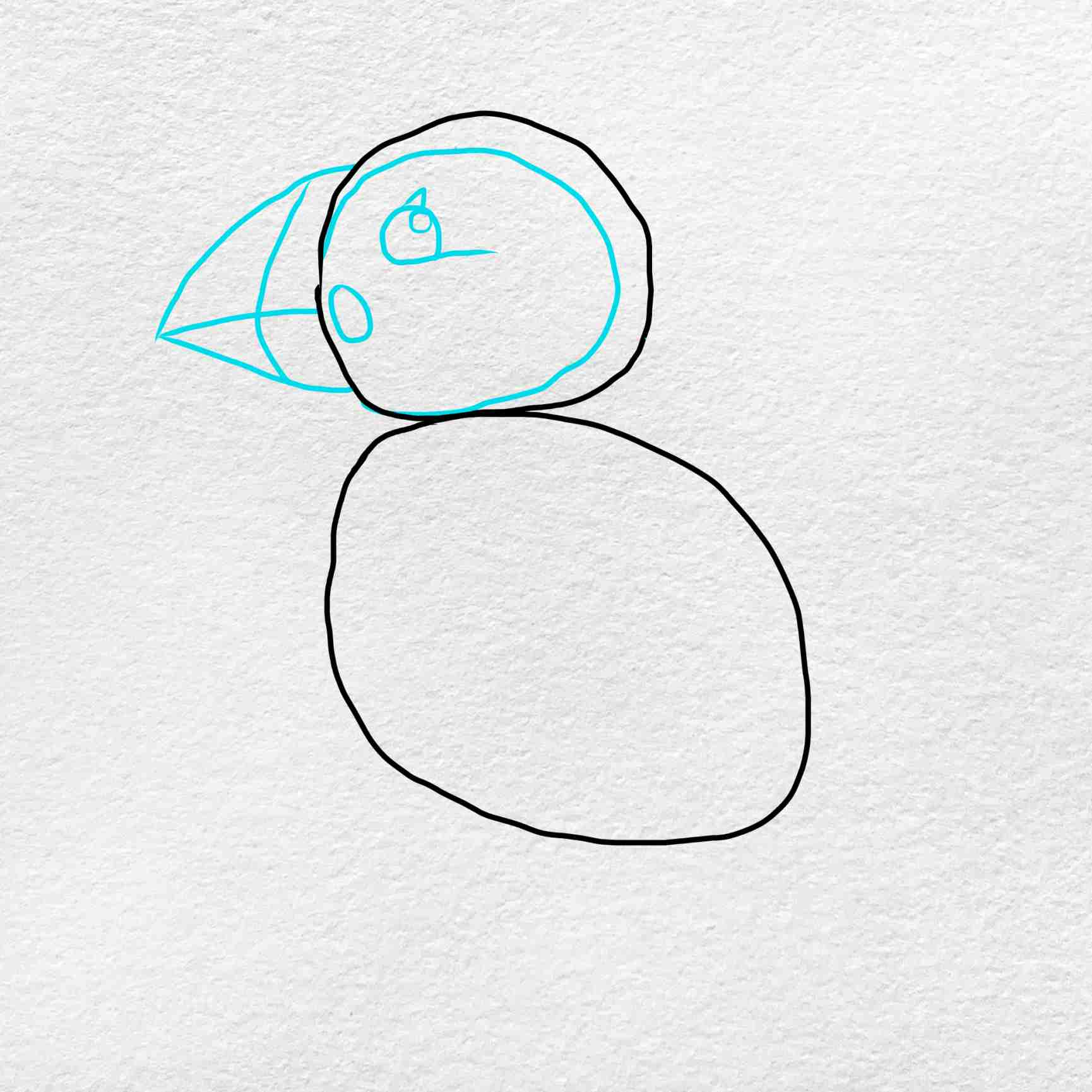 How To Draw Puffin: Step 3