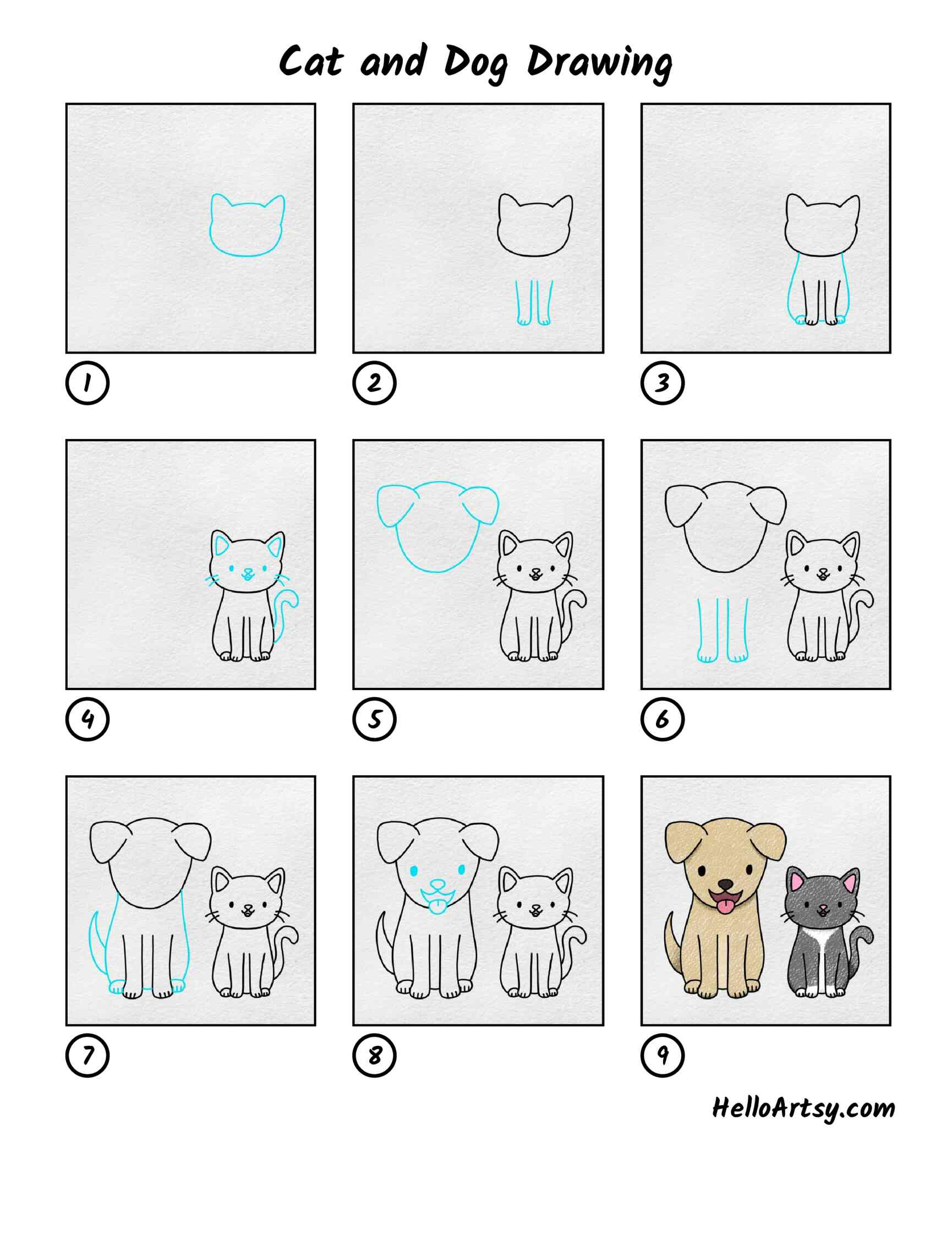 Cat And Dog Drawing: All Steps