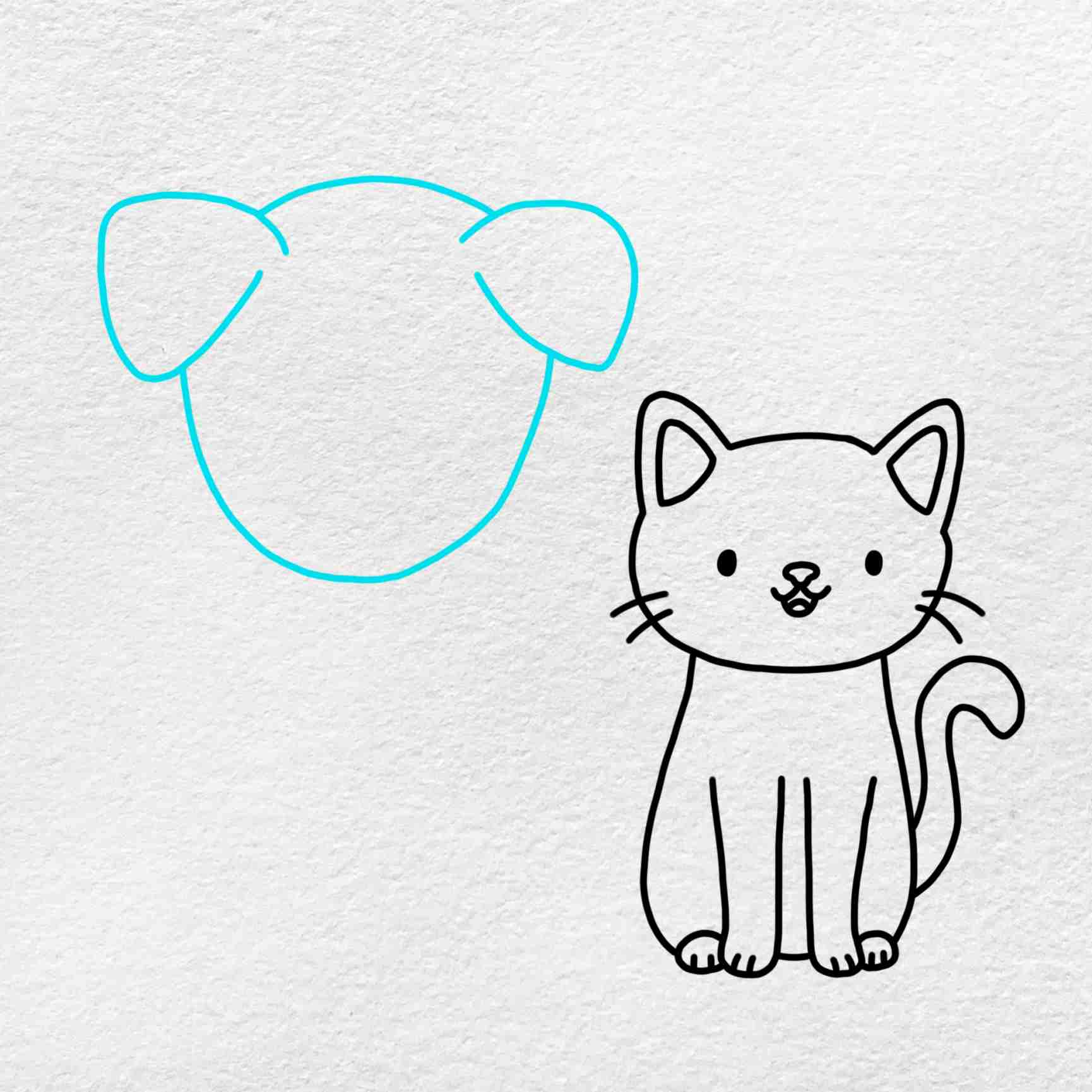 Cat And Dog Drawing: Step 5