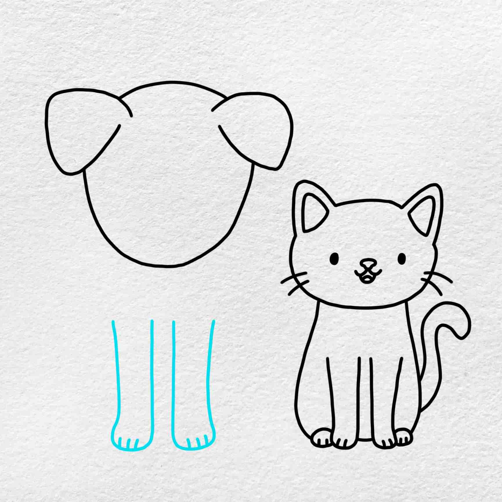 Cat And Dog Drawing: Step 6