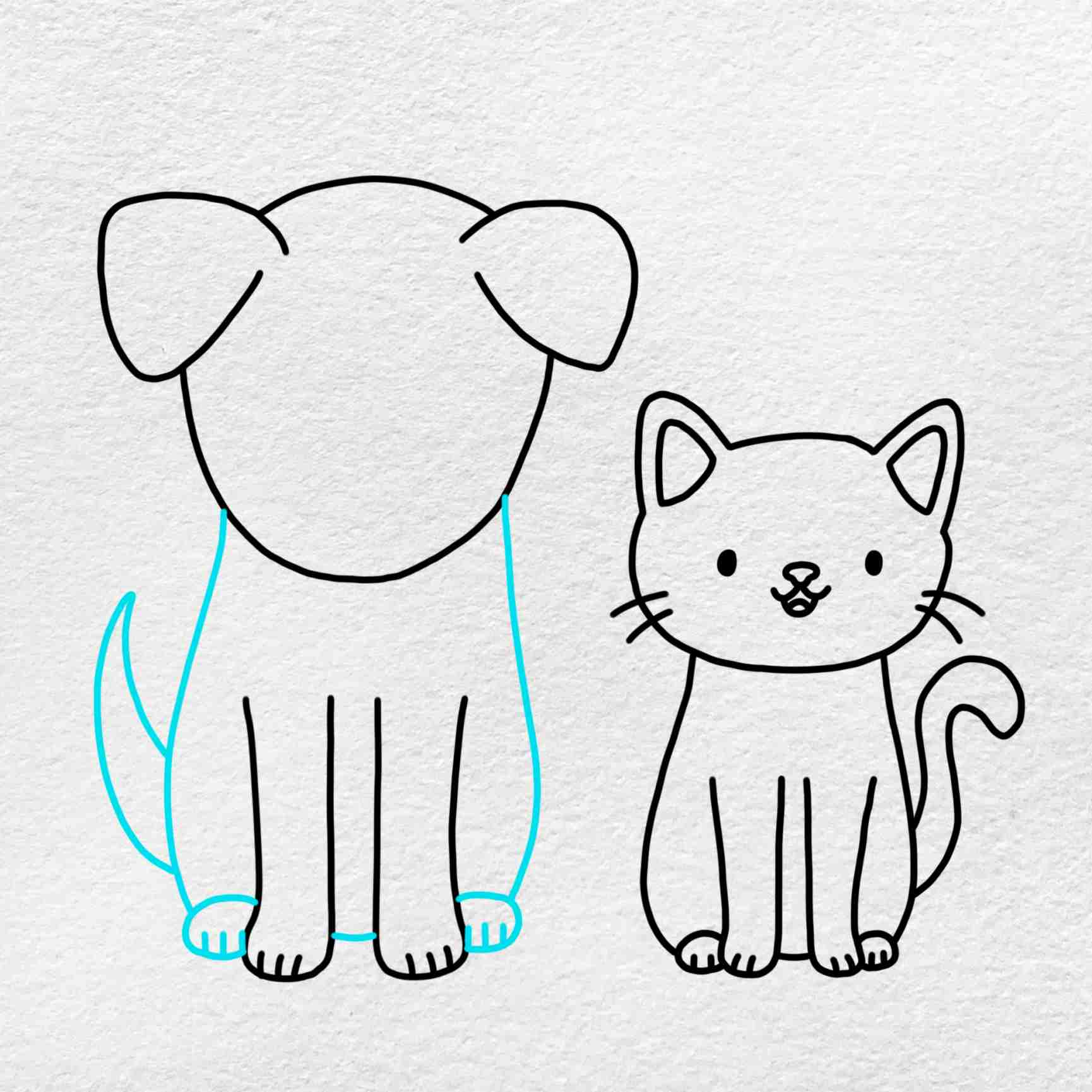Cat And Dog Drawing: Step 7