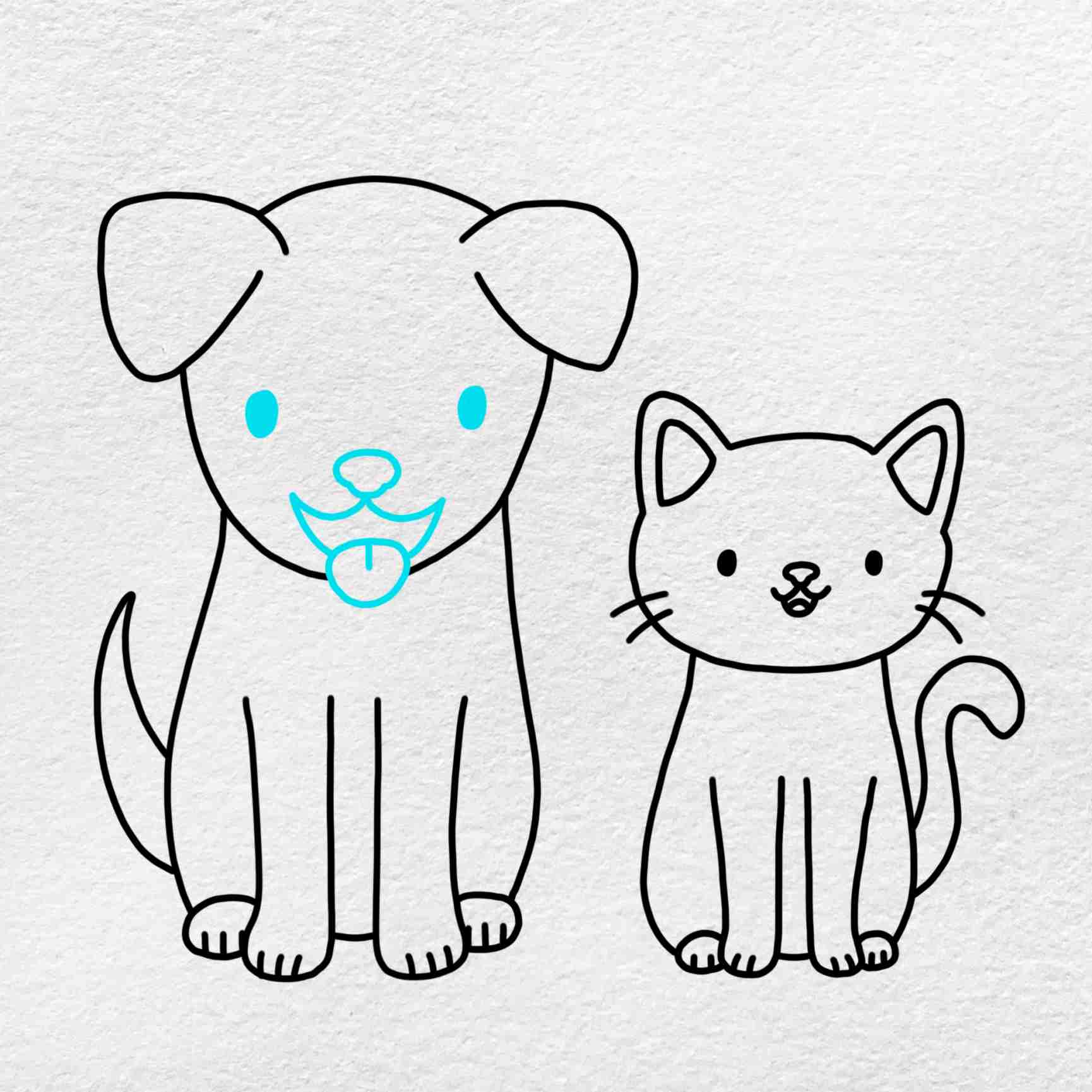 Cat And Dog Drawing: Step 8