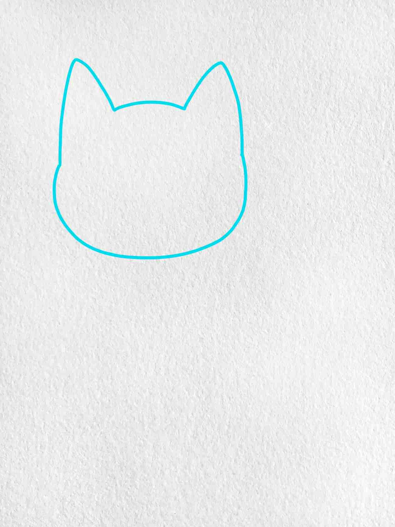 Cat Drawing For Kids: Step 1