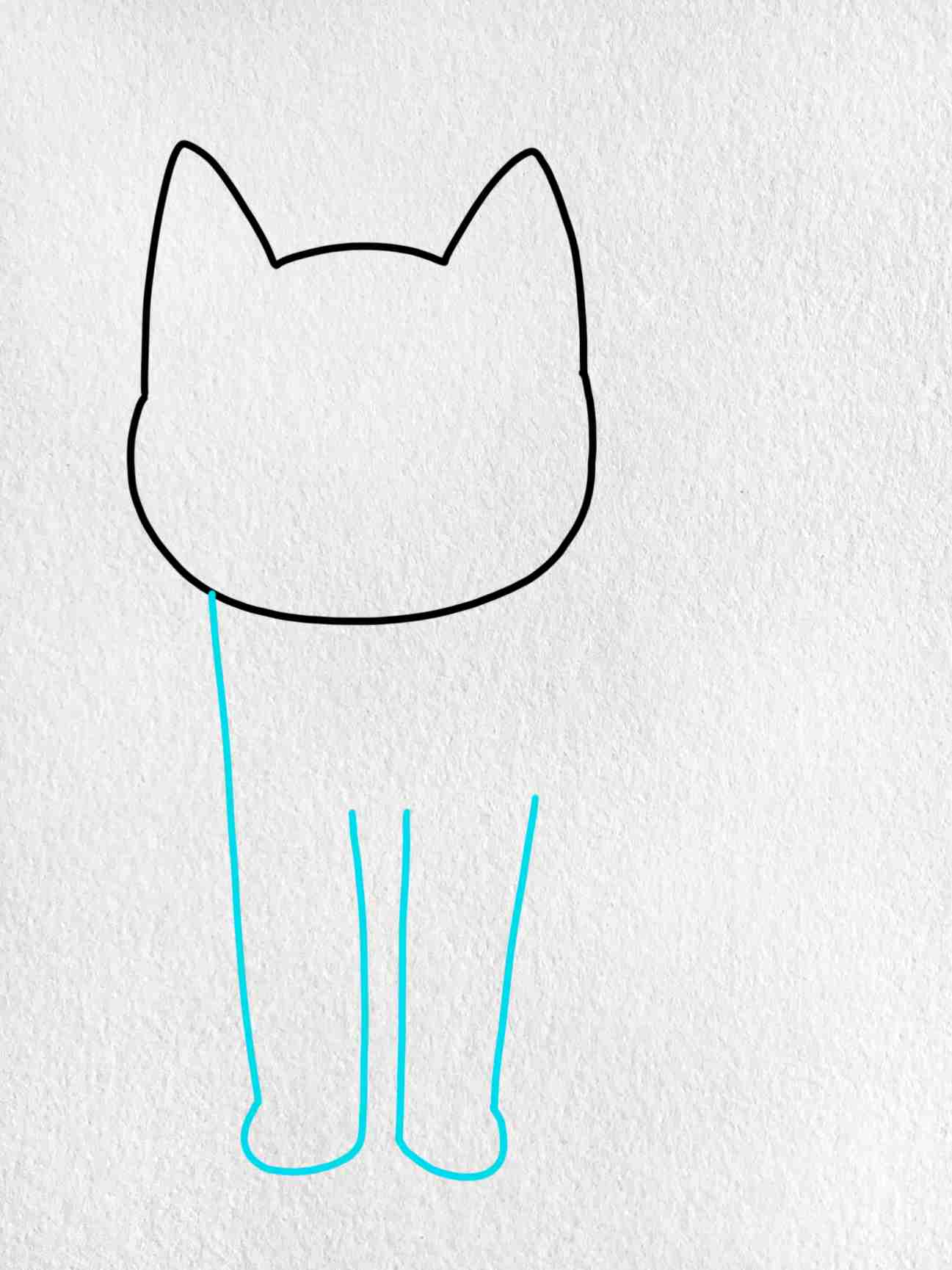 Cat Drawing For Kids: Step 2