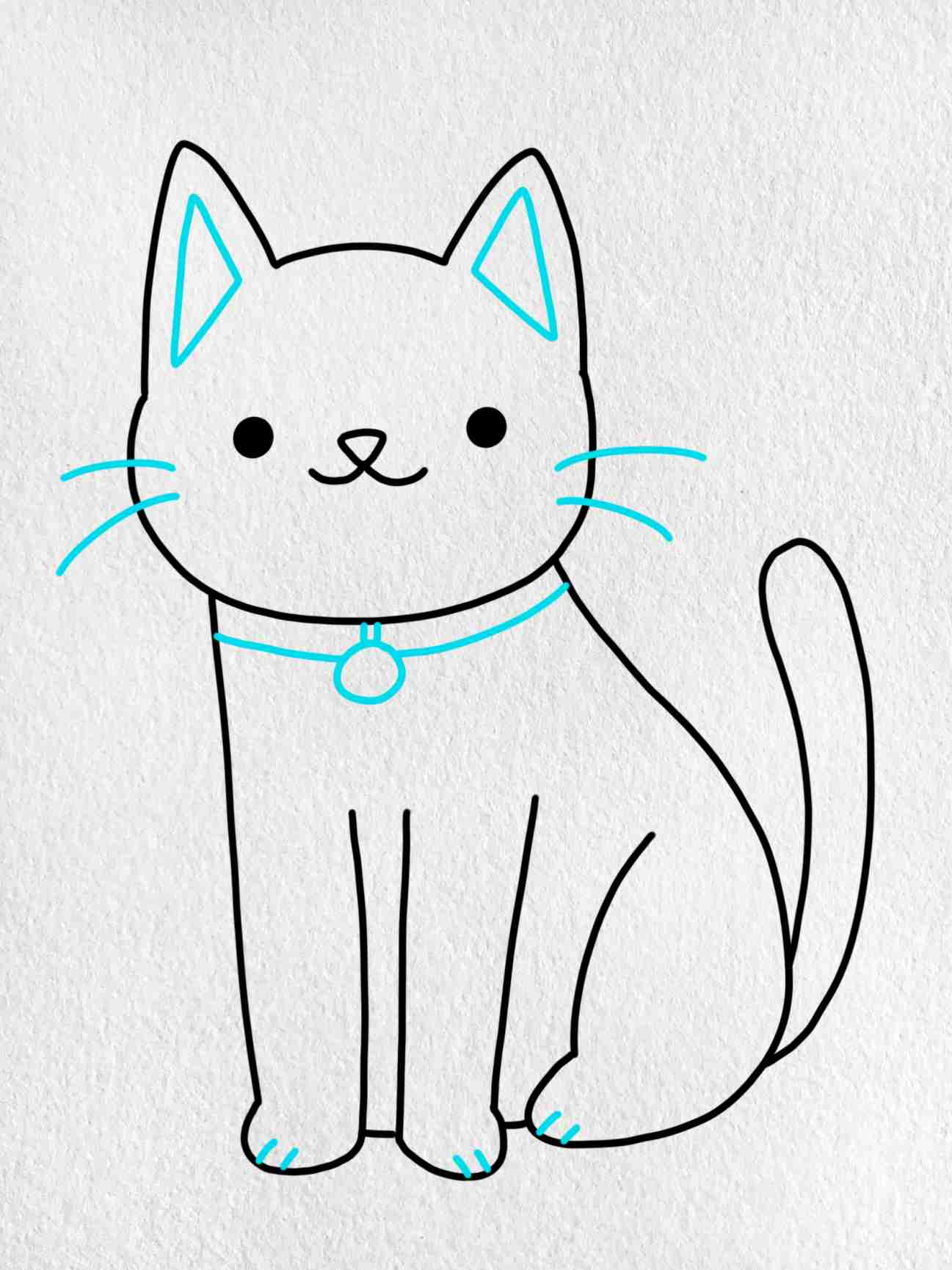 Cat Drawing For Kids: Step 5