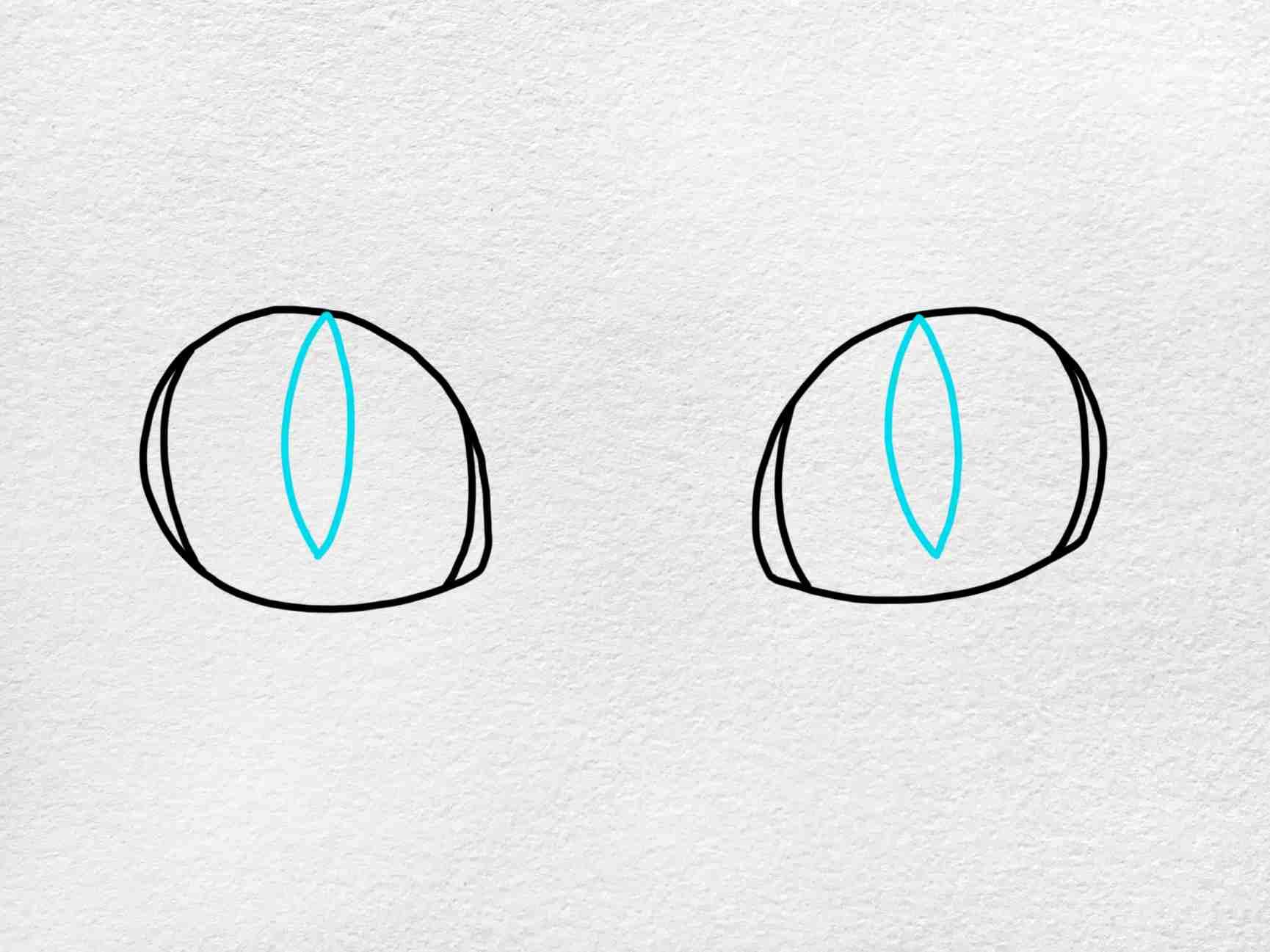 Cat Eyes Drawing: Step 4